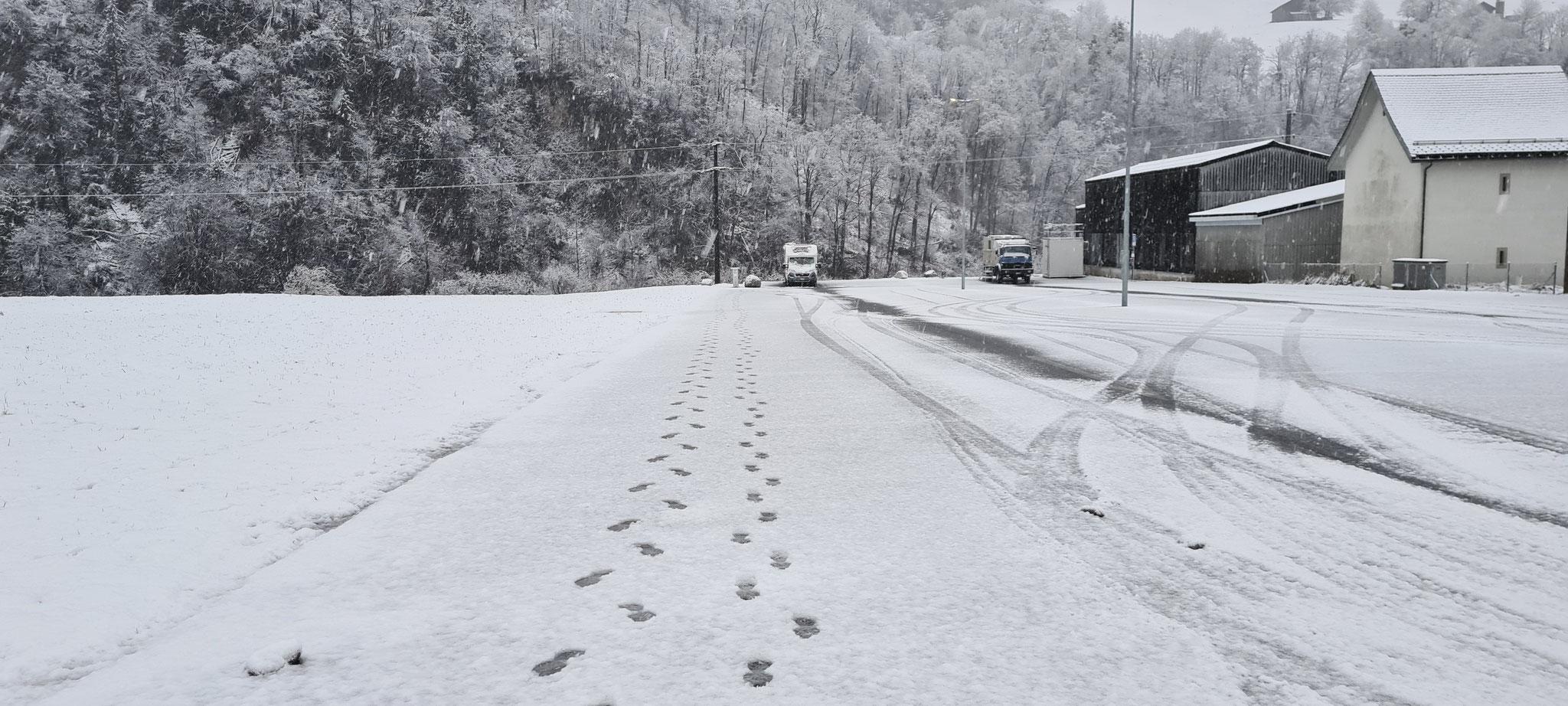 Unsere Spuren im Schnee (links) - Rechts von den kleinen Formel1-Fahrern