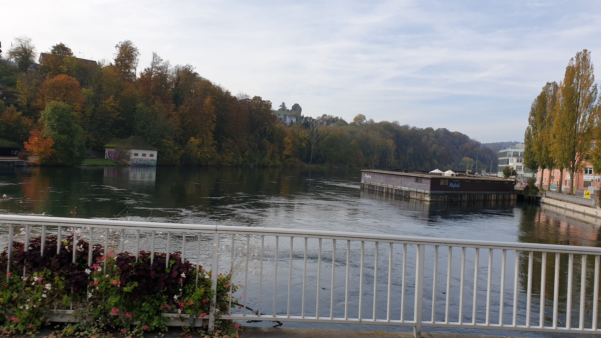 ...schwupps über den Rhein