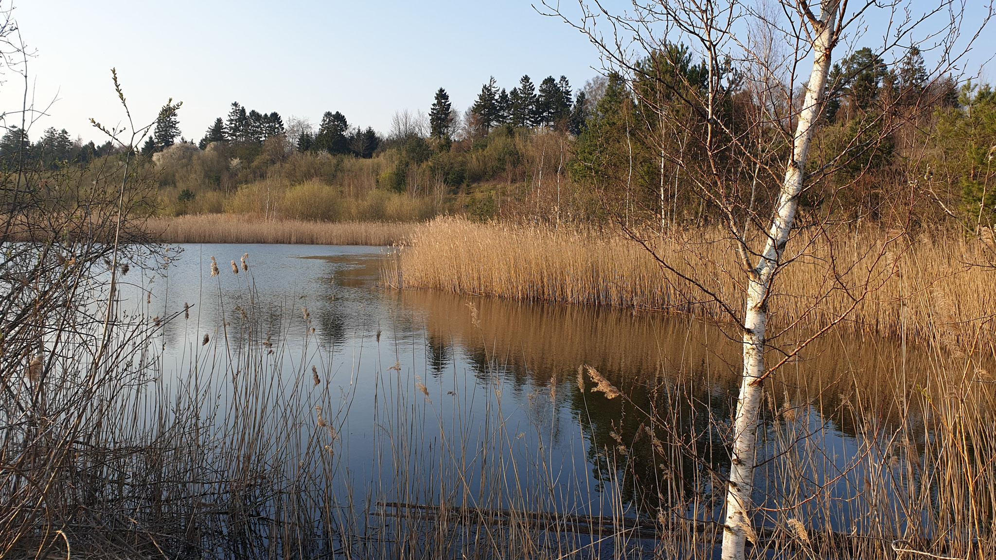 Kleiner Baggersee direkt am Stellplatz