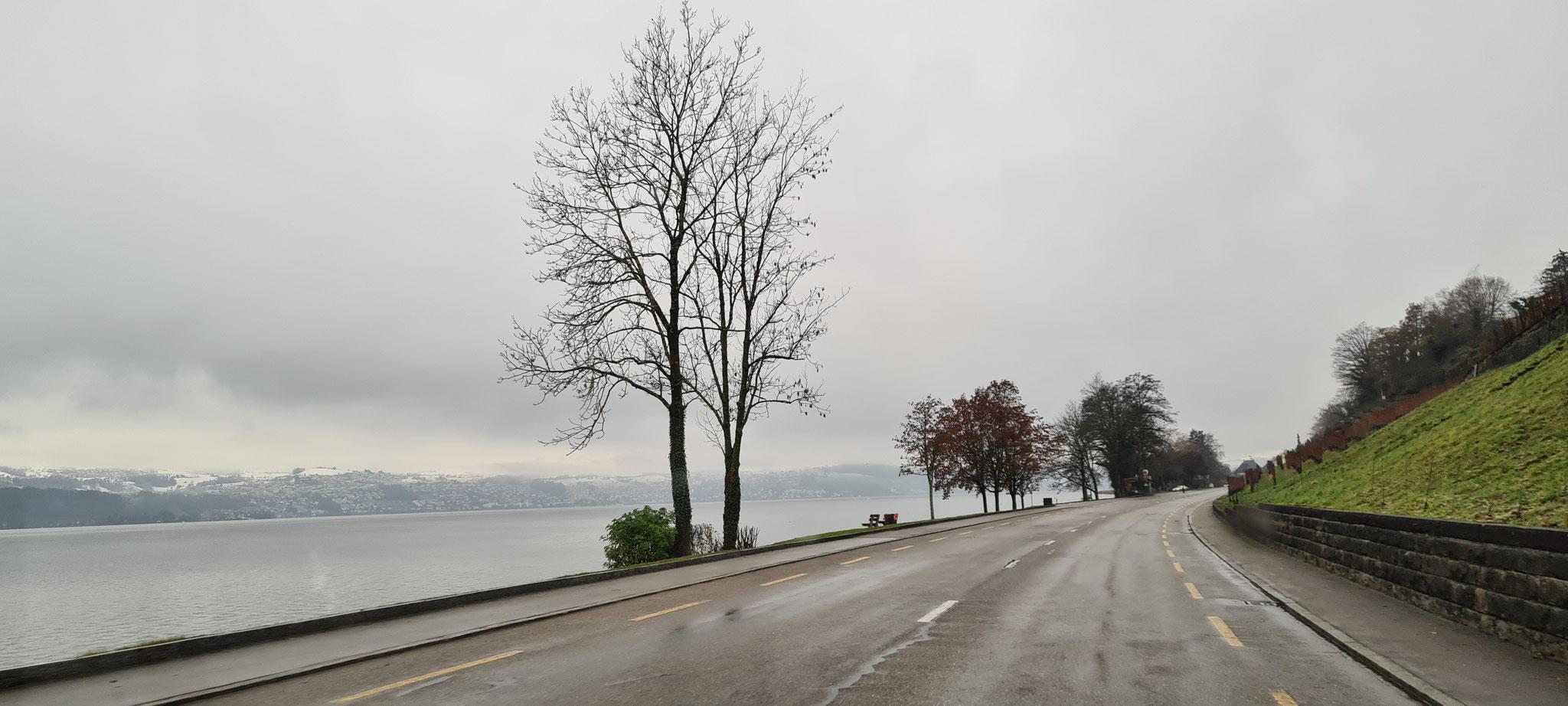 Entlang am Zürichsee...