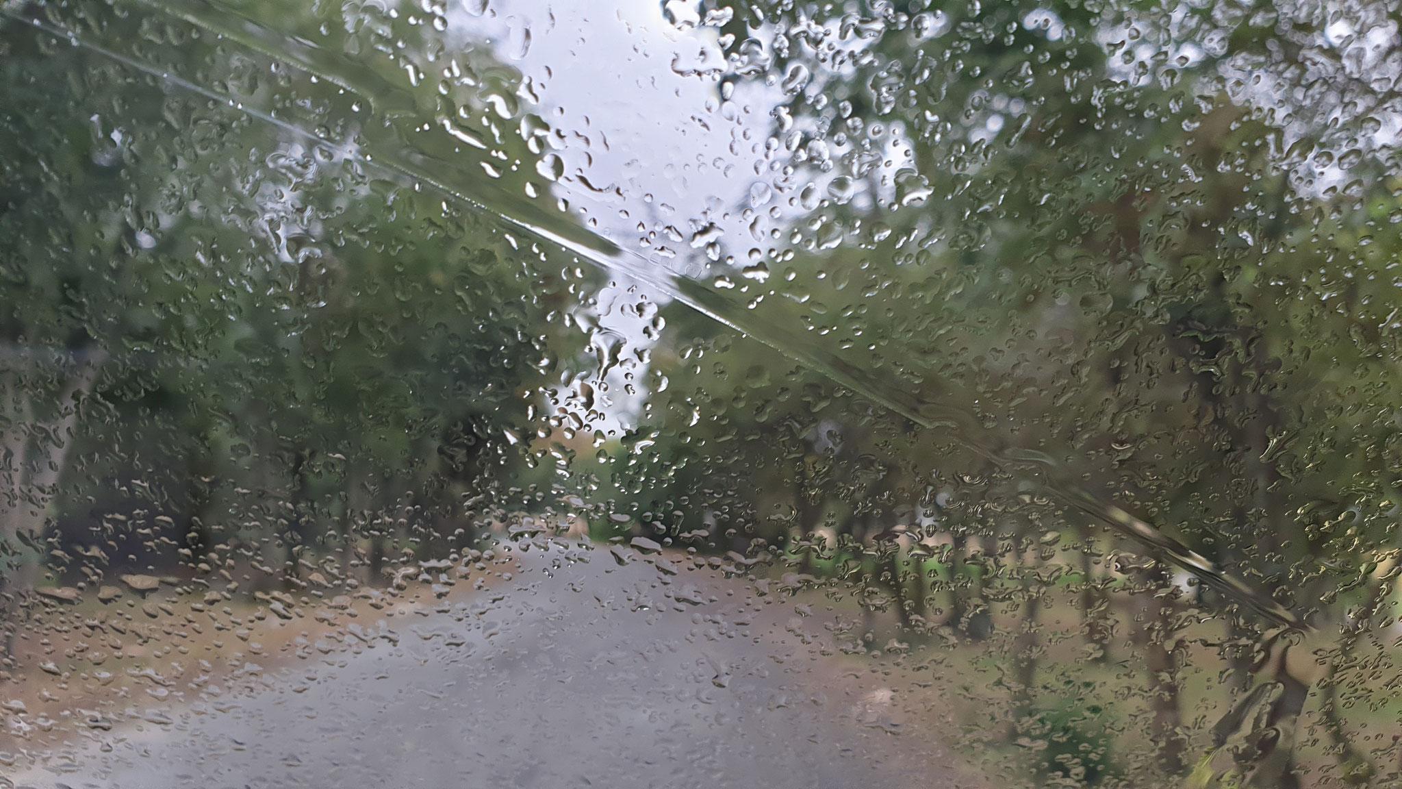 Plötzlich beginnt es zu regnen