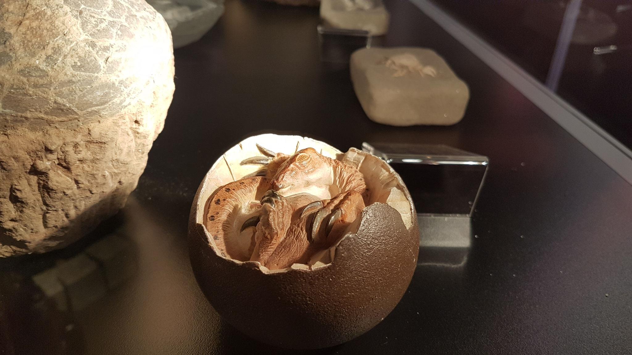 Ein kleines Dino-Ei