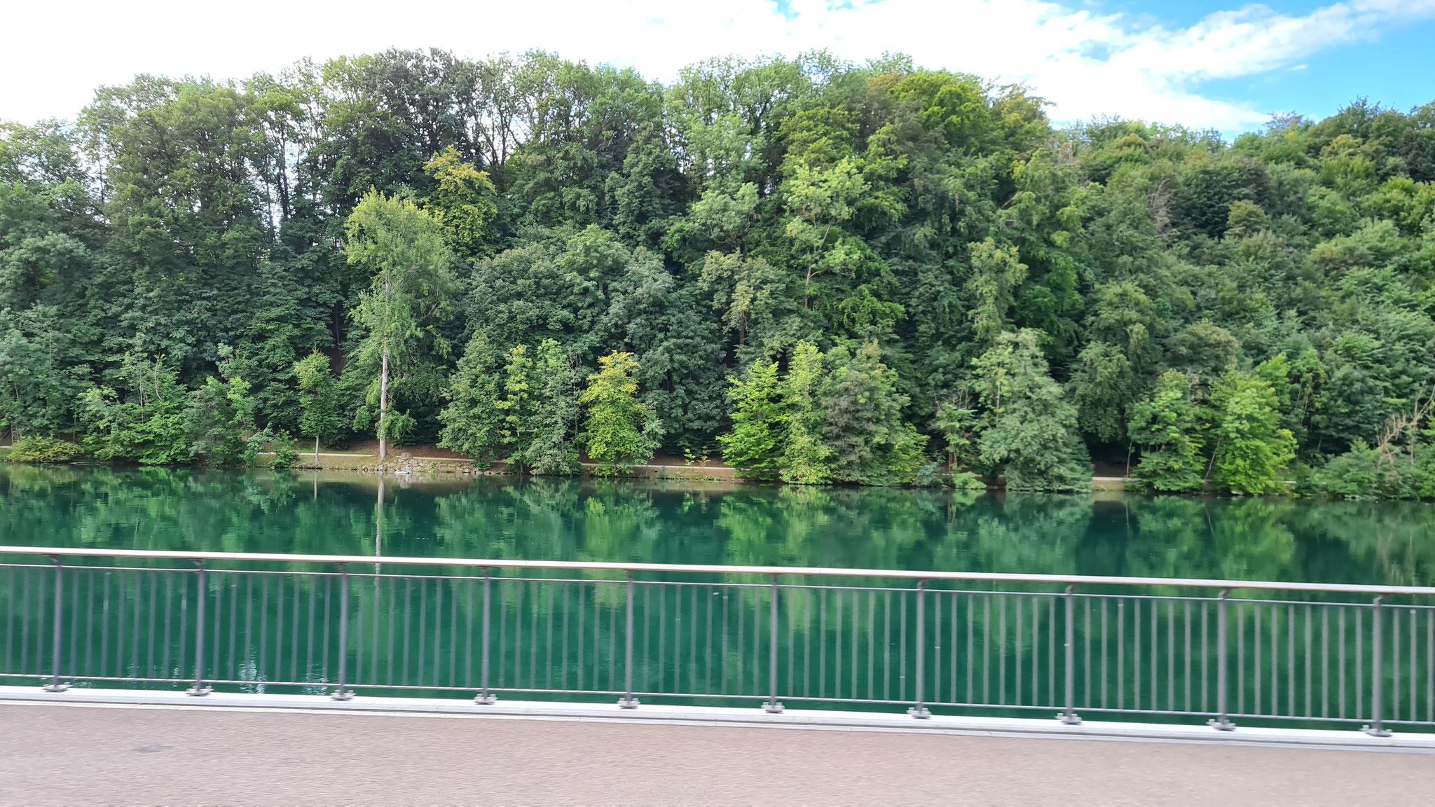 Da ist schon wieder der Rhein