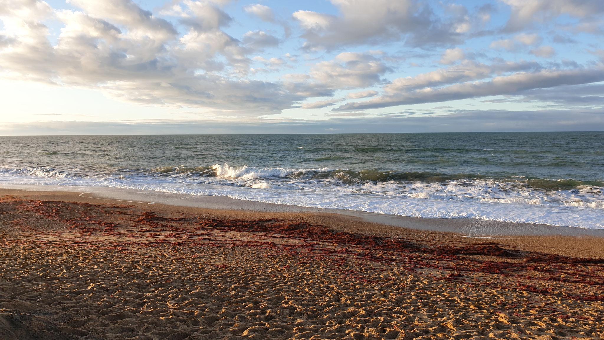 Der Neujahrsmorgen am Atlantik...