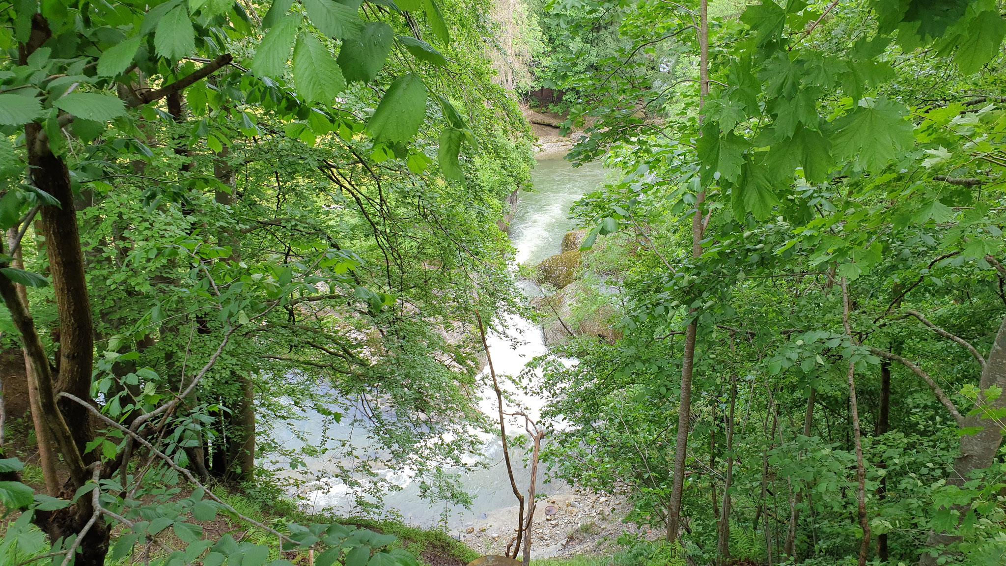 Schlucht bei Nesslau-Krummenau