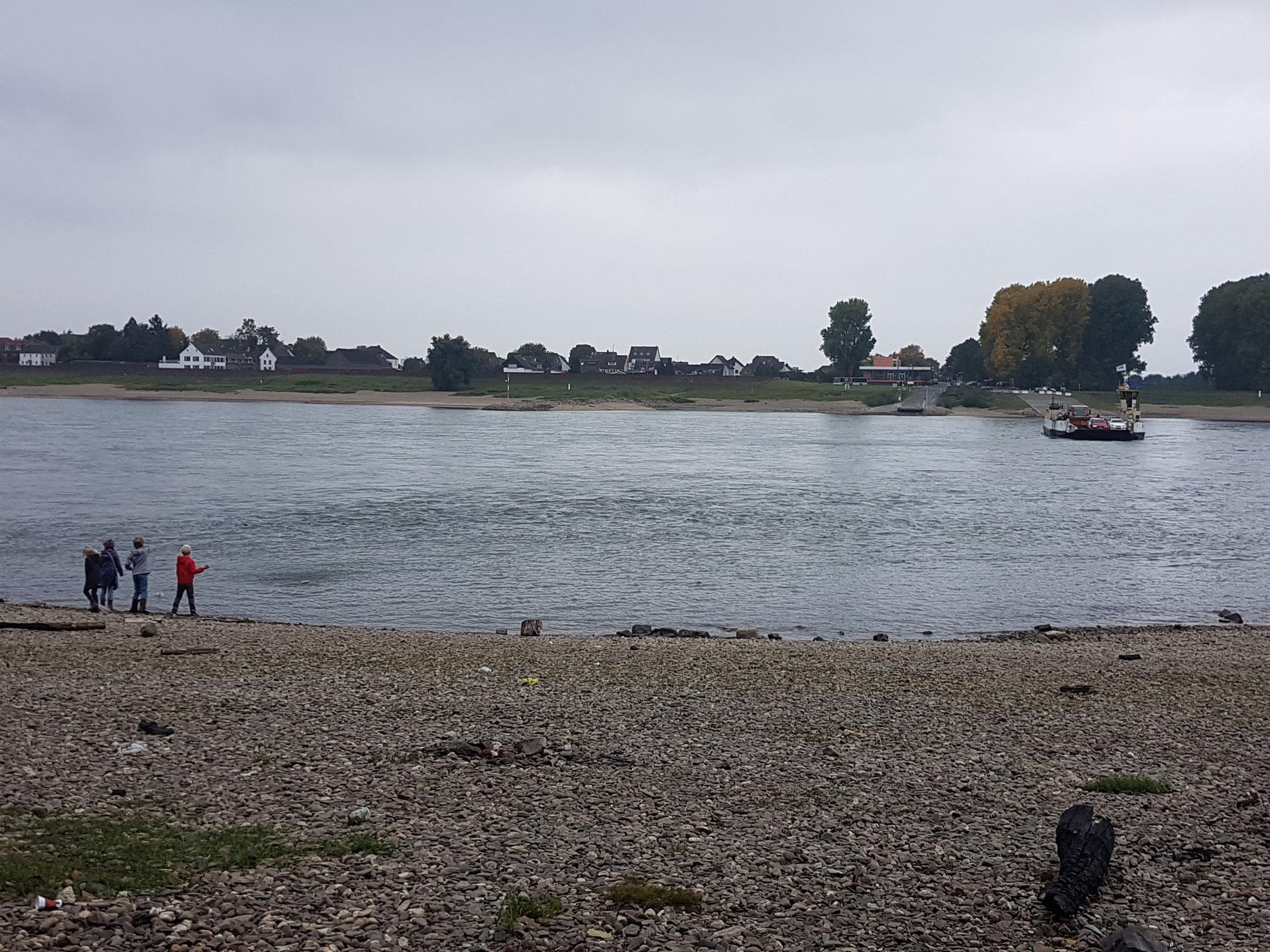 Wir gehen zum Rheinufer uns suchen Kieselsteine
