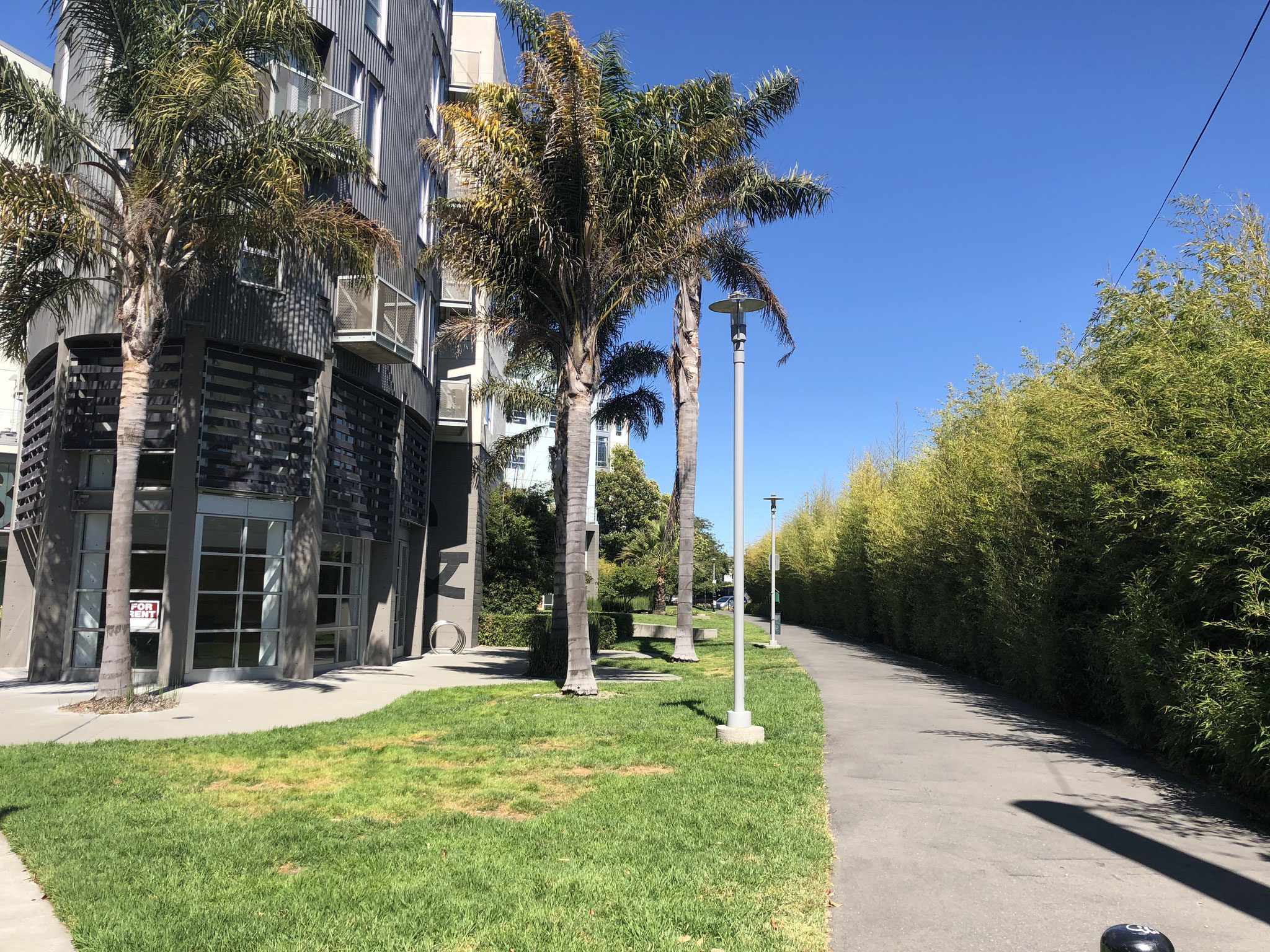 Condo Park Path Area