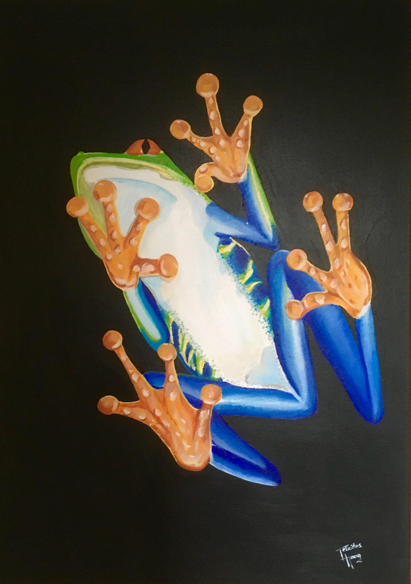 Frosch auf Glasscheibe