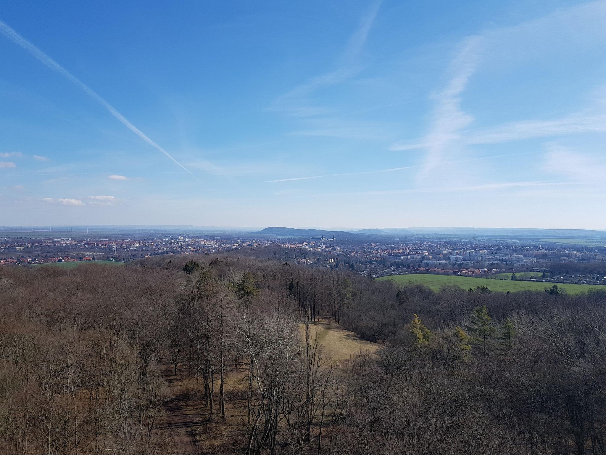 Blick vom Bürgerturm auf Gotha