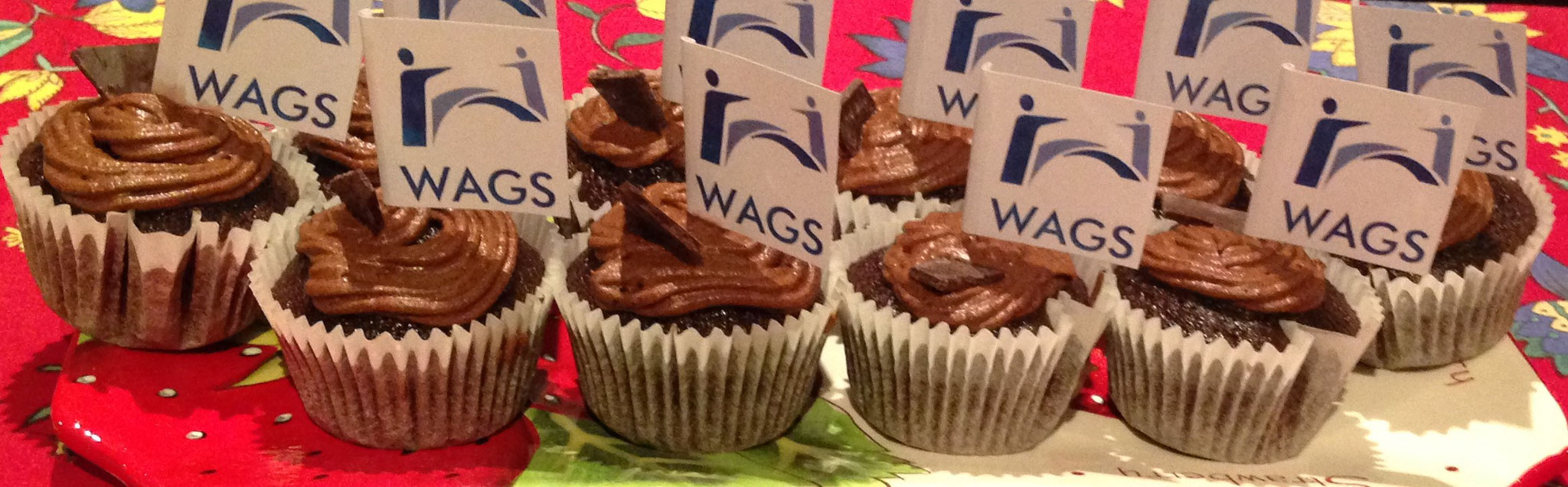 Logo and cupcakes from Dr Ricky Arenson who was one of the principal founders of WAGS in 2015. He now works in Murdoch after leaving WAGS in 2019.