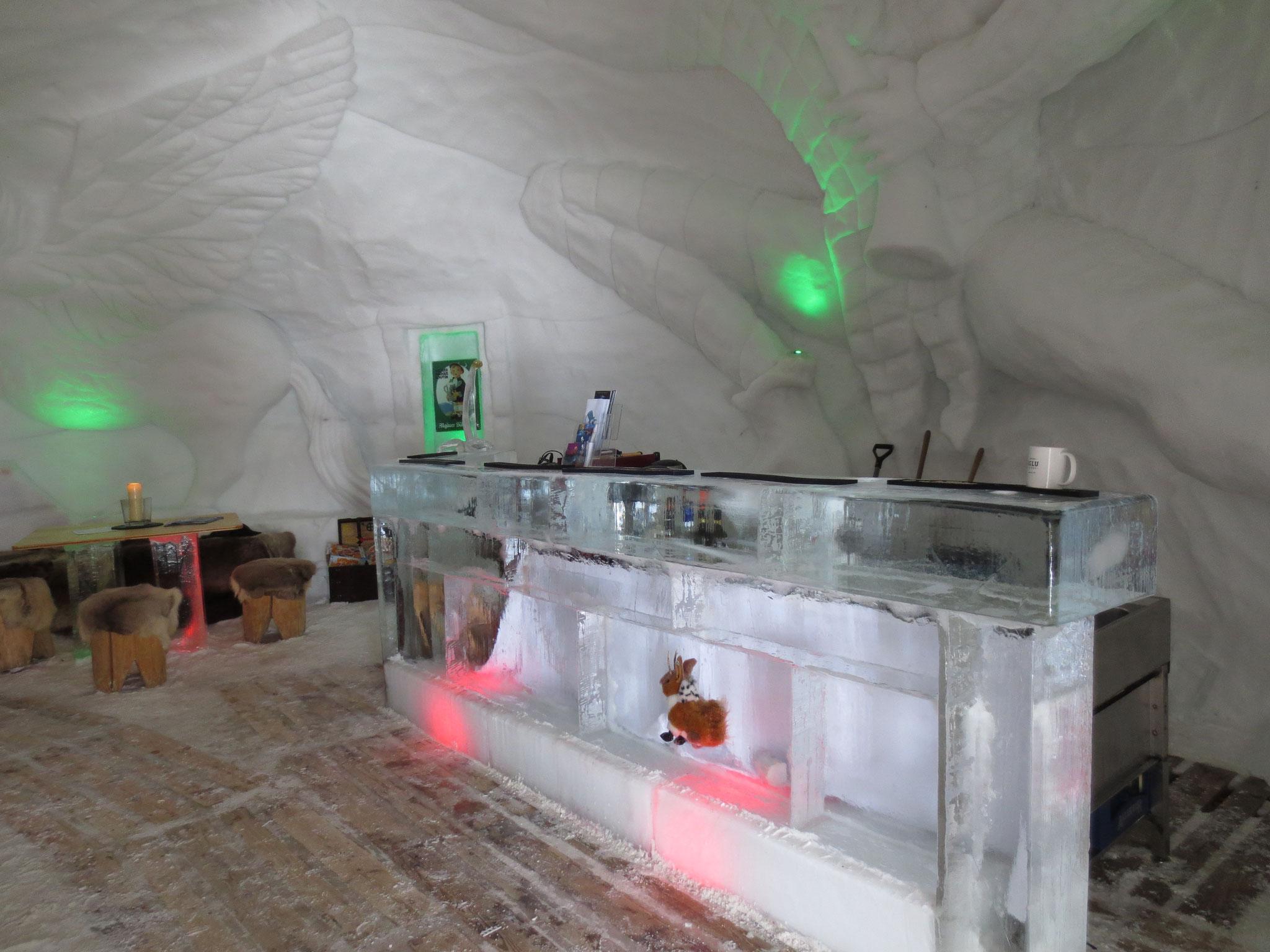 Eisbar im Iglu-Dorf