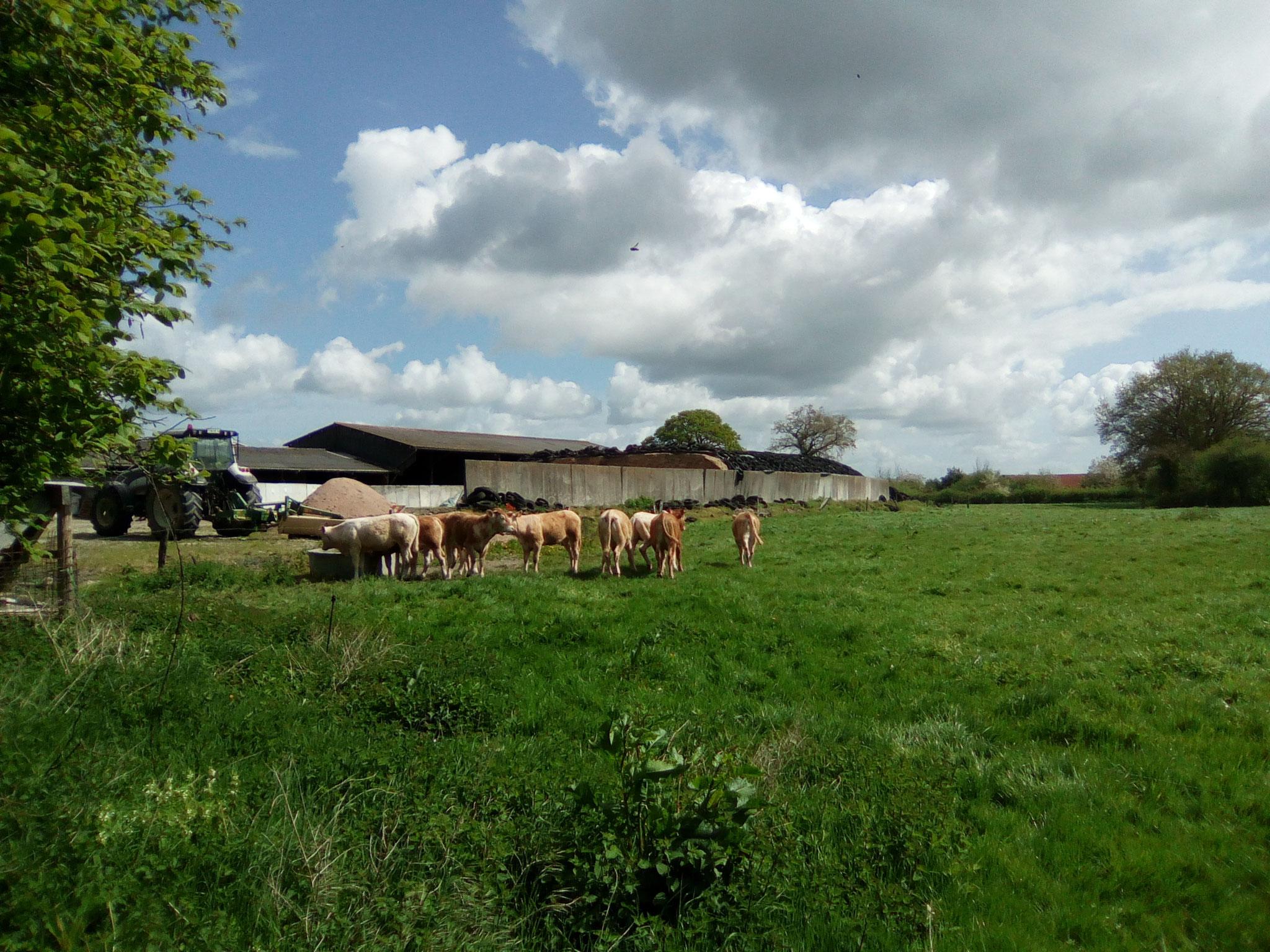 La ferme mitoyenne de la ferme de la baconnerie
