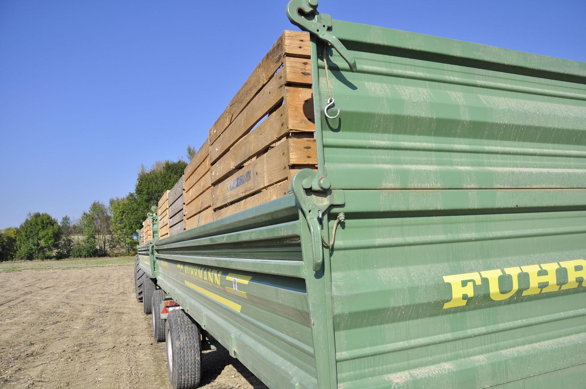 Abtransport in Kisten
