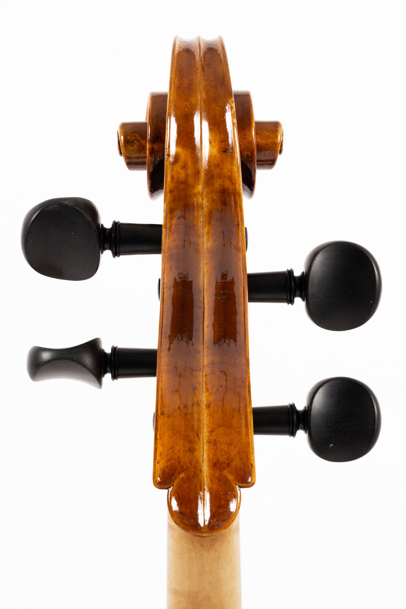 Baroque Cello after Jacobus Stainer (2020/VD), Photo: VDB Photography