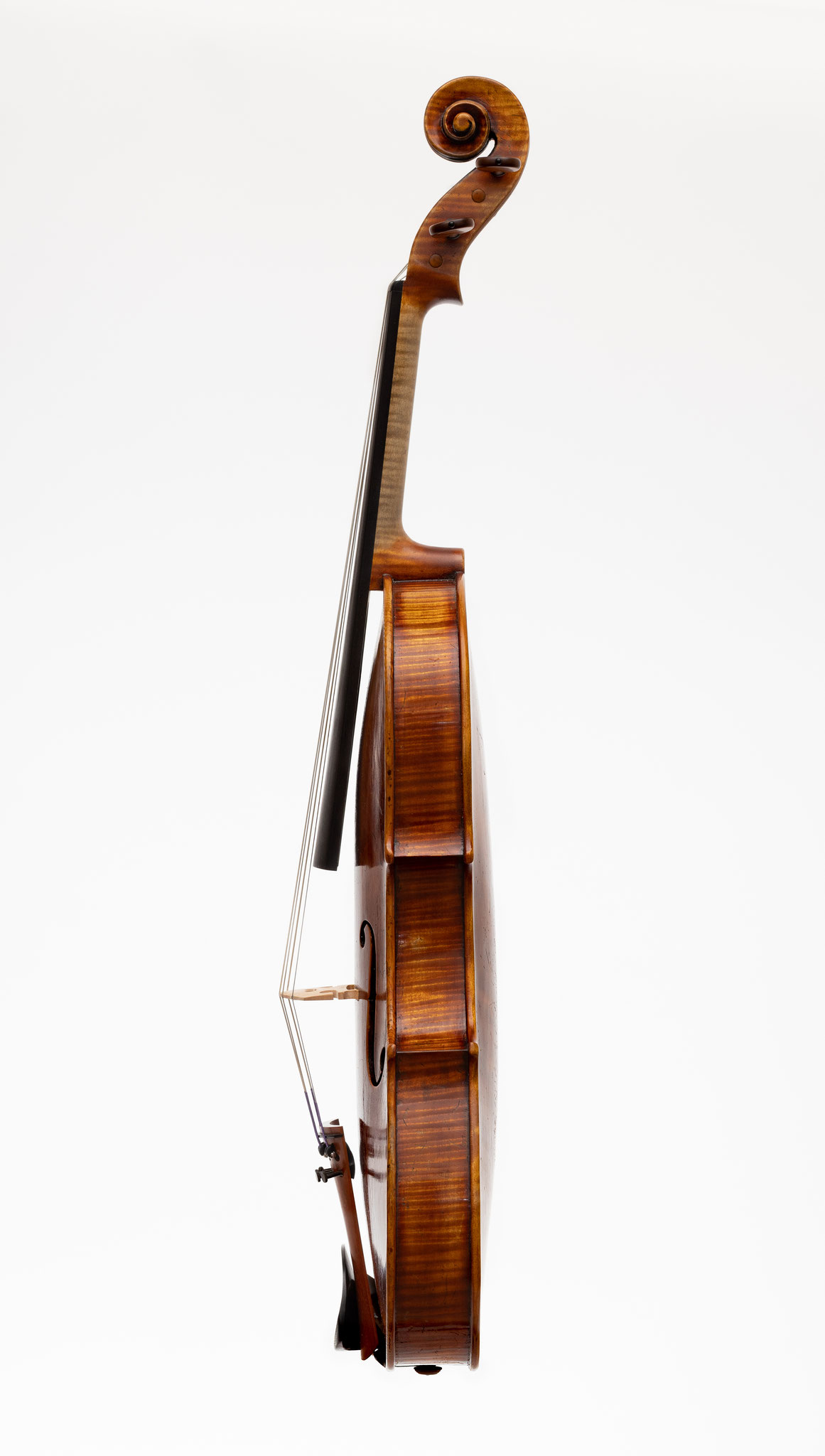 Viola in the style of G.Guarneri del Gesù (2019/CH), Photo: VDB Photography