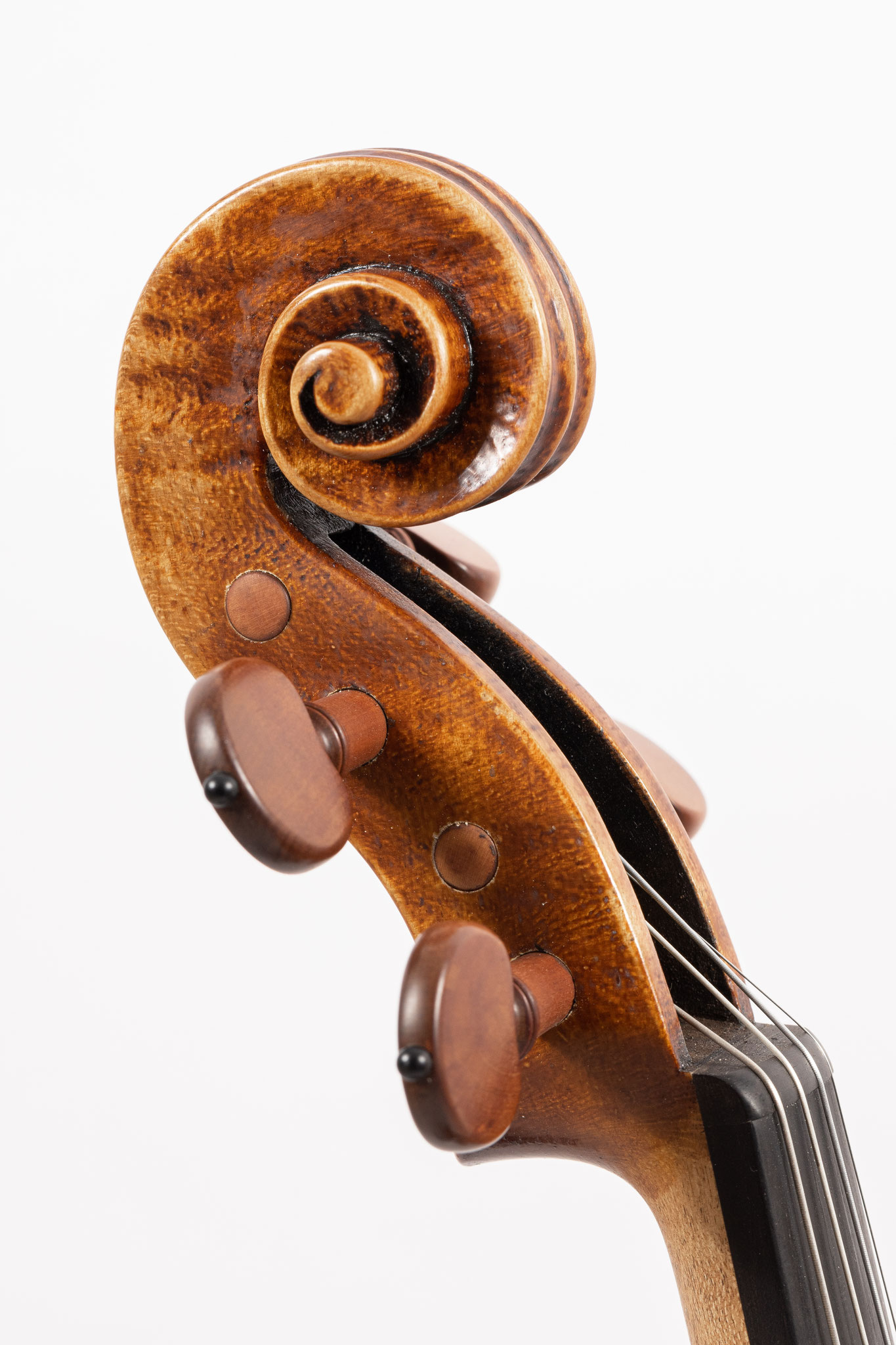 Violin after G. Guarneri del Gesù (2020/CH), Photo: VDB Photography
