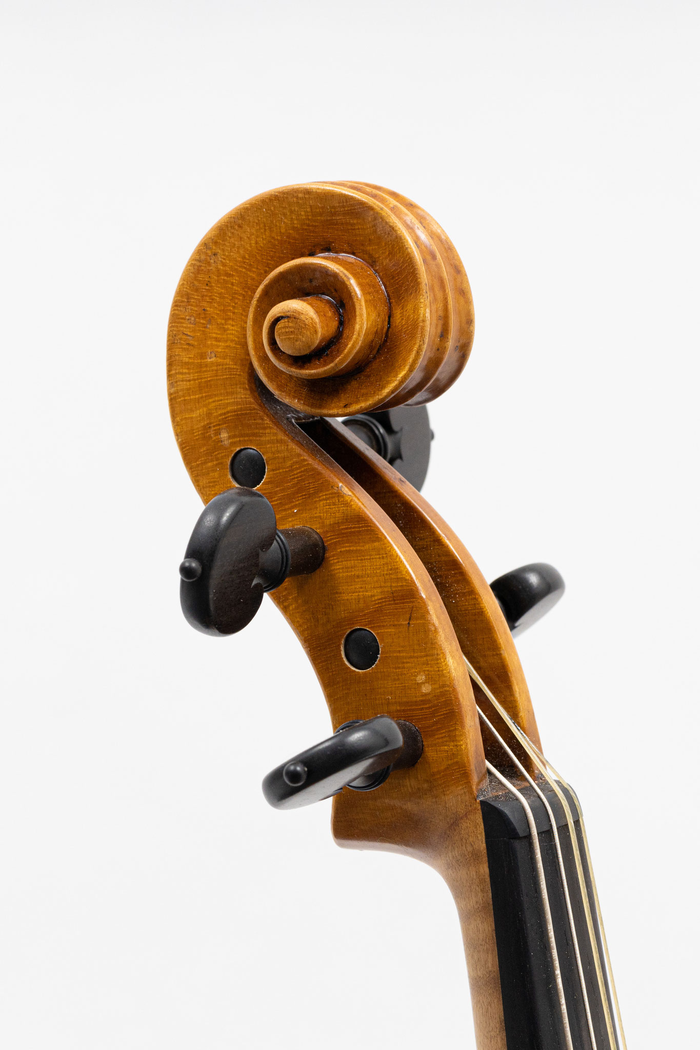 Baroque violin after Jacobus Stainer (2019/VD), Photo: VDB Photography