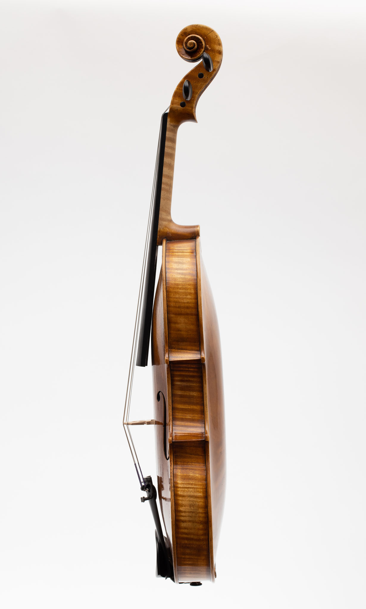 Viola nach Andrea Guarneri (2018/CH), Photo: VDB Photography