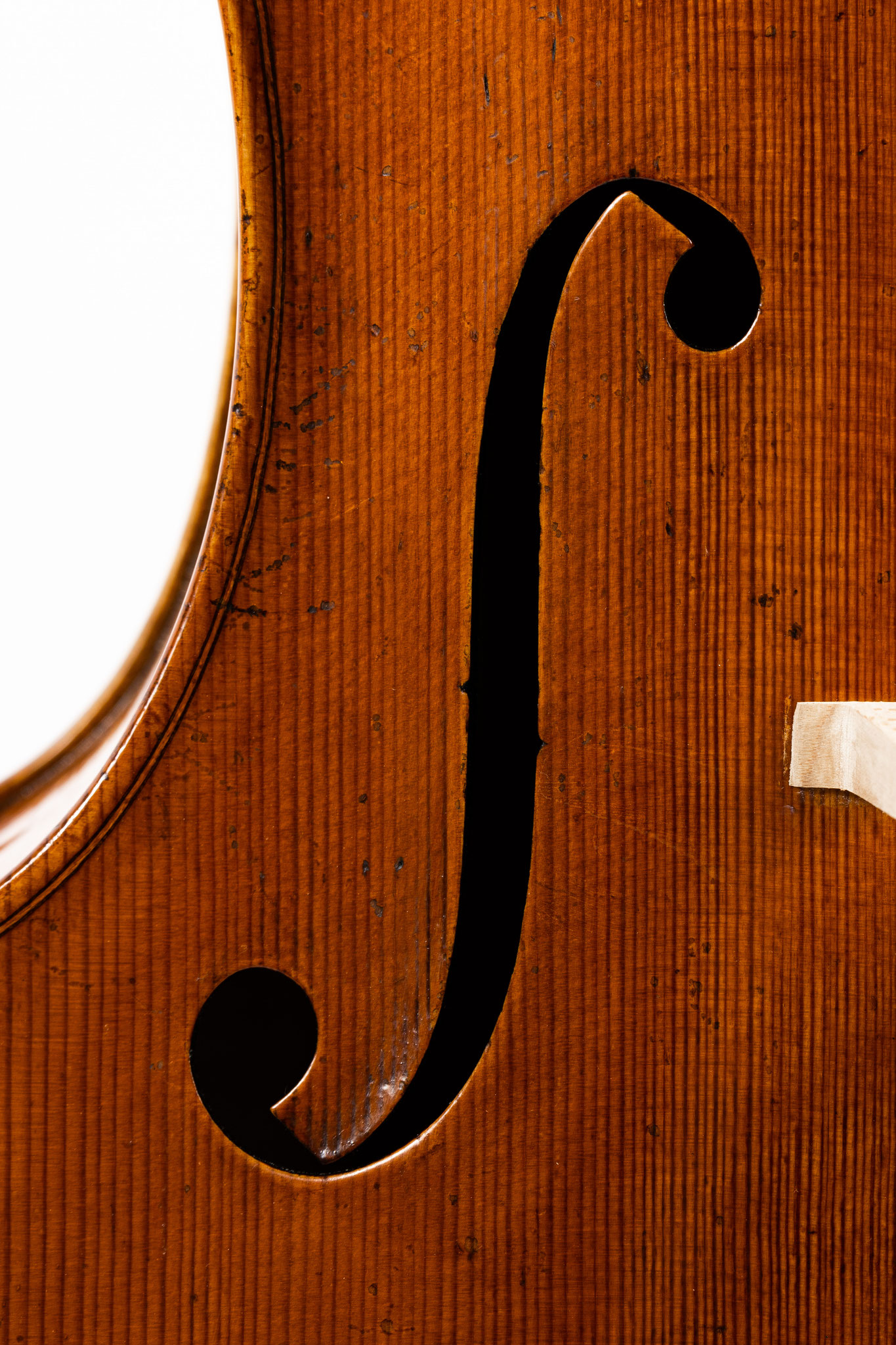 7/8 Cello after G.B. Guadagnini (2020/CH), Photo: VDB Photography