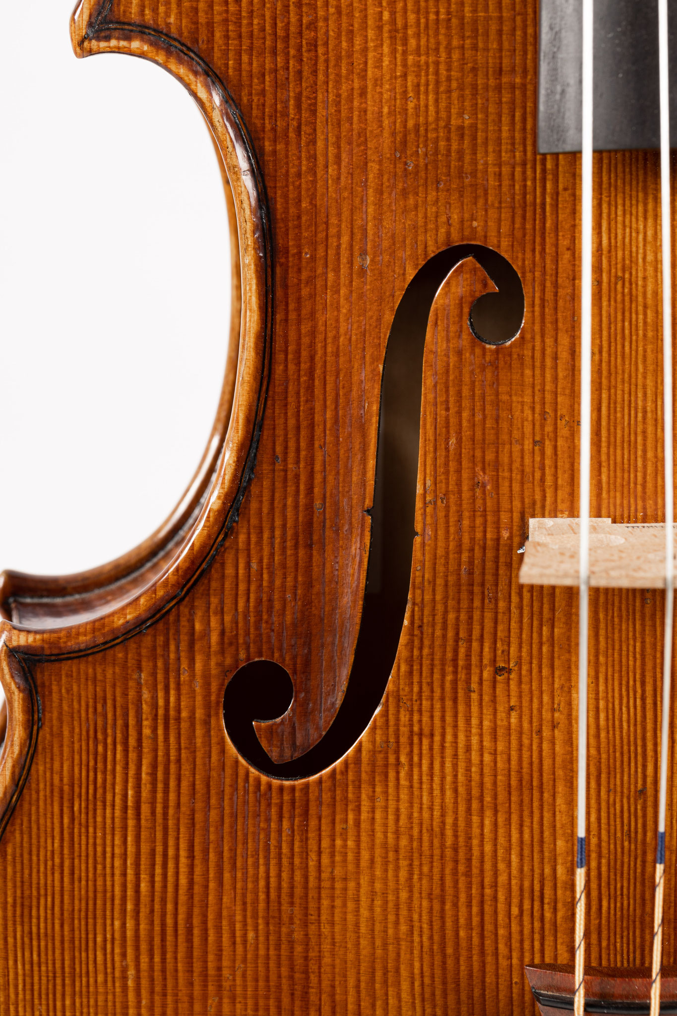 Viola in the style of G.Guarneri del Gesù (2020/CH), Photo: VDB Photography