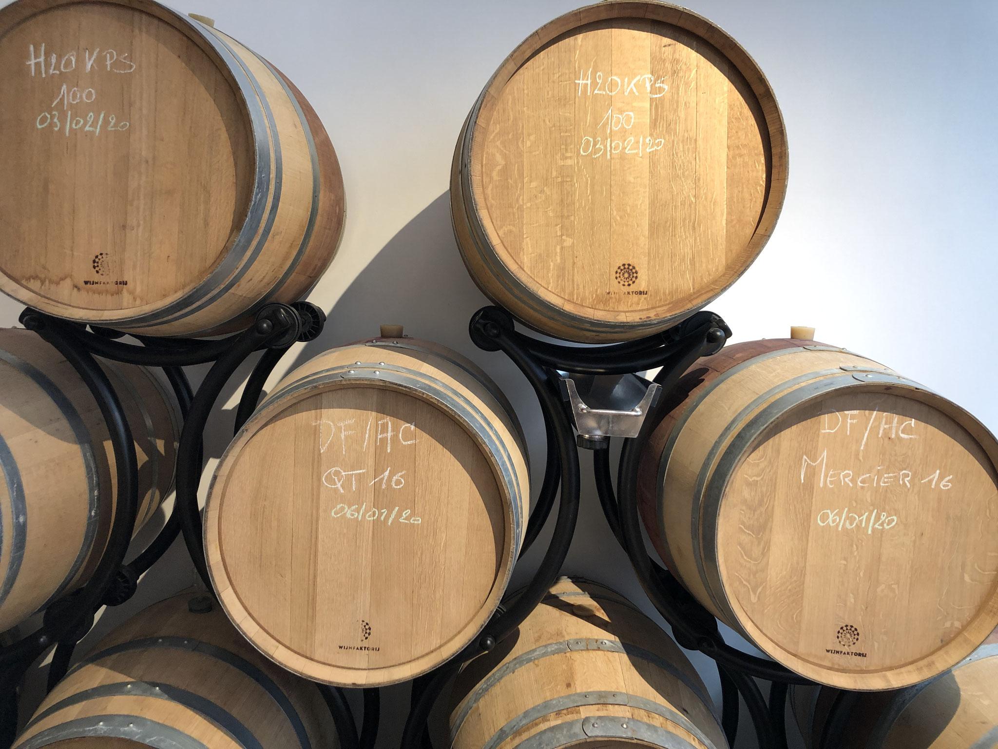 Franse & Amerikaanse eik in de Wijnfaktorij hartje Antwerpen.