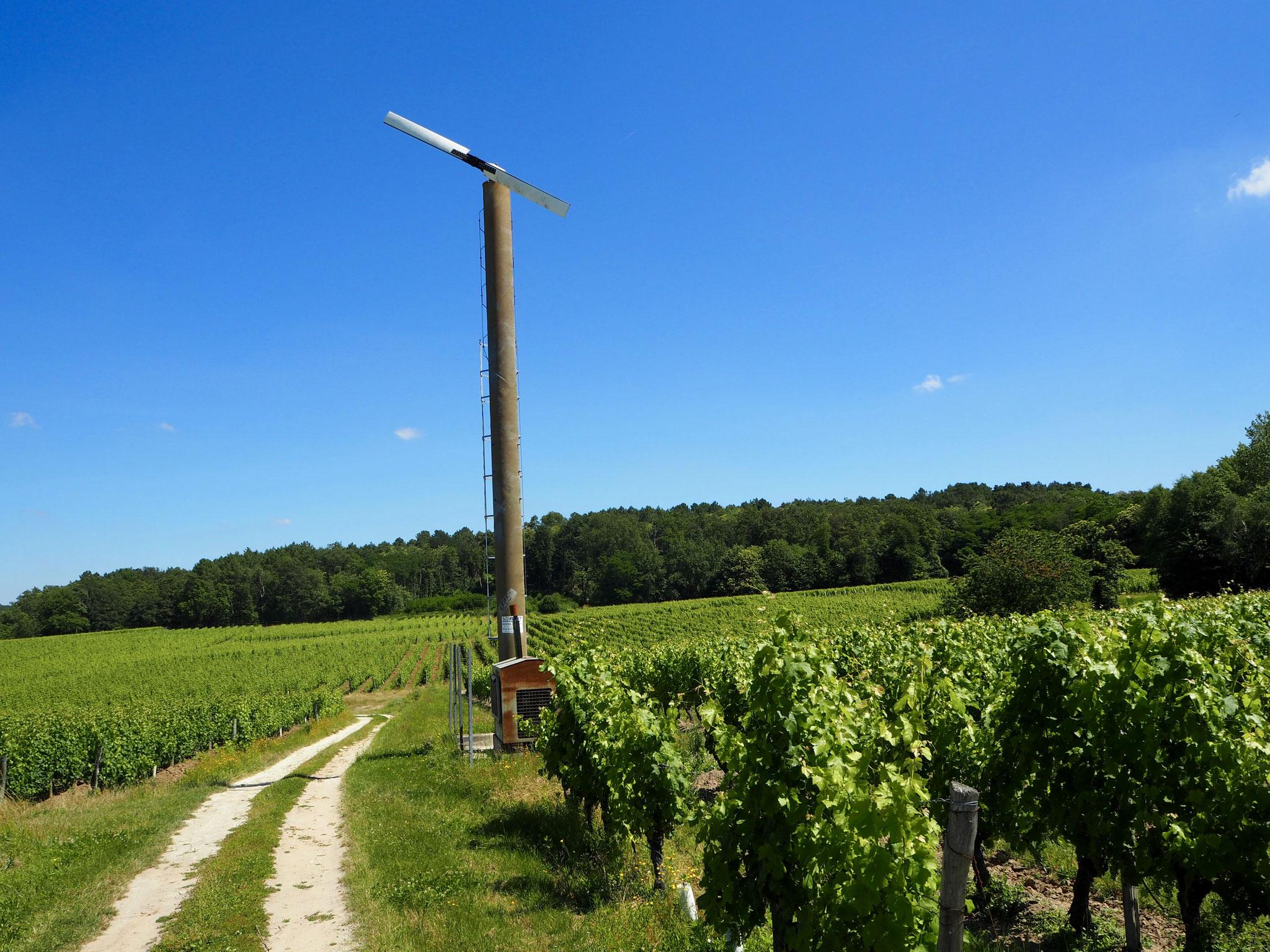 windmolen in Bourgueil Loire