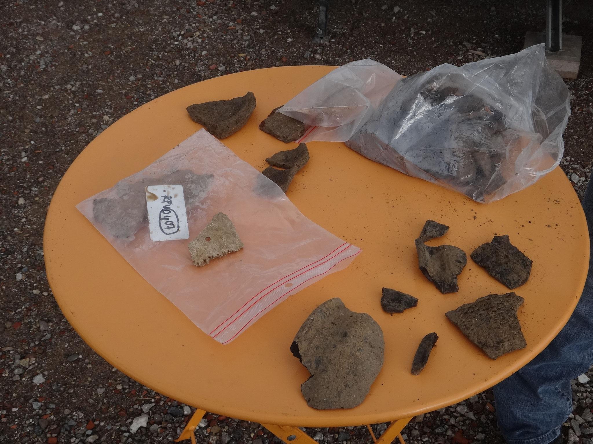 Premières découvertes : de la céramique et un morceau de calotte cranienne