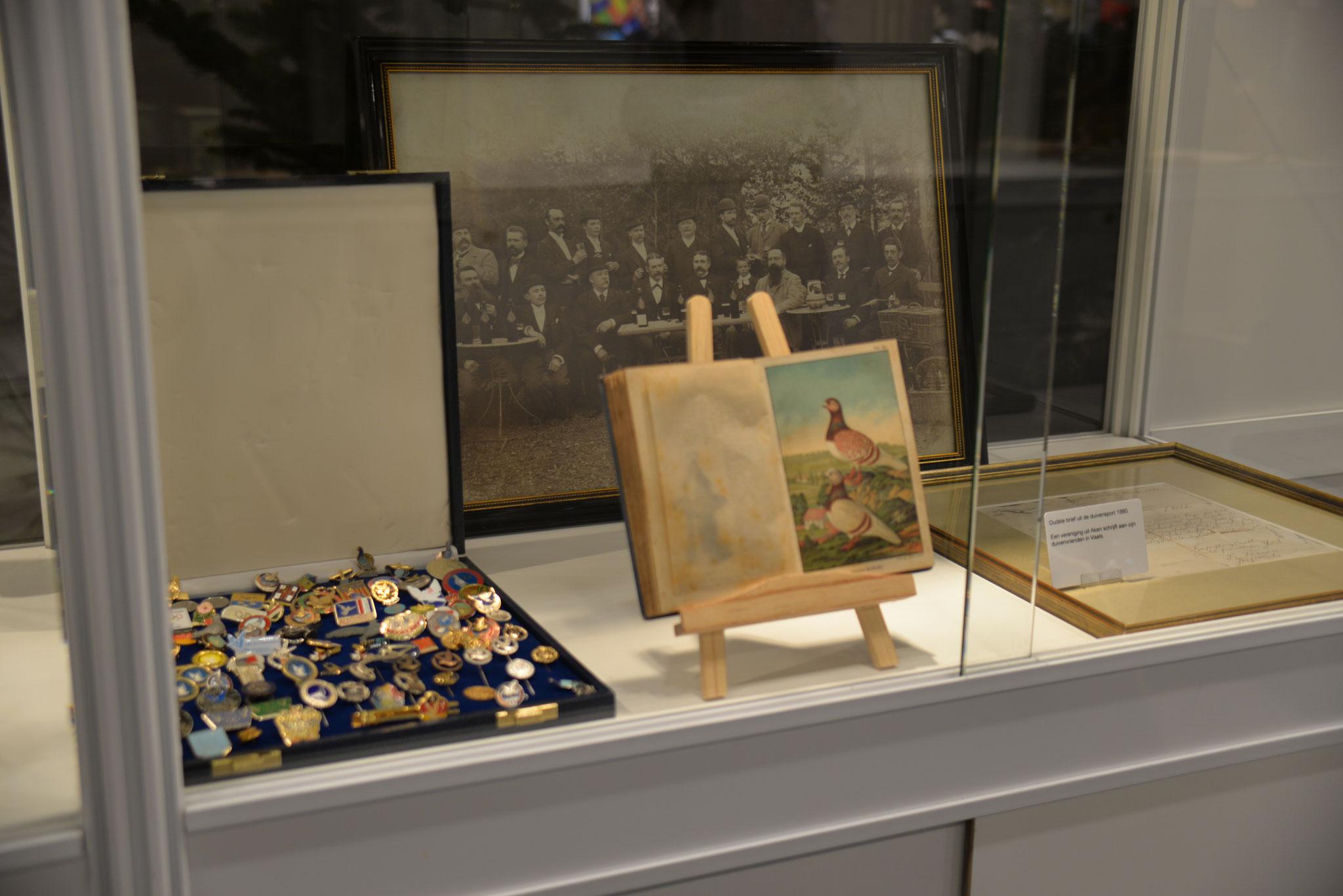Umfangreiche Sammlung von Pins und Anstecknadeln diverser Taubensport-Veranstaltungen
