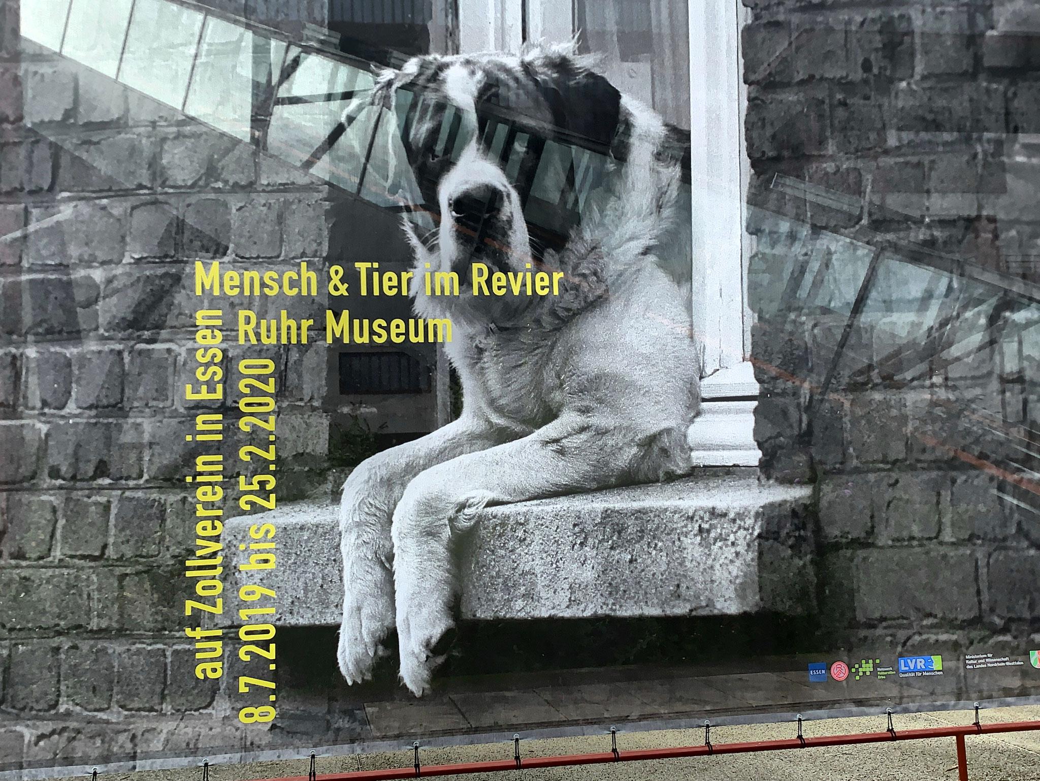 """Nicht zu übersehen ist das große Banner als Hinweis zur Ausstellung """"Mensch und Tier im Revier"""""""