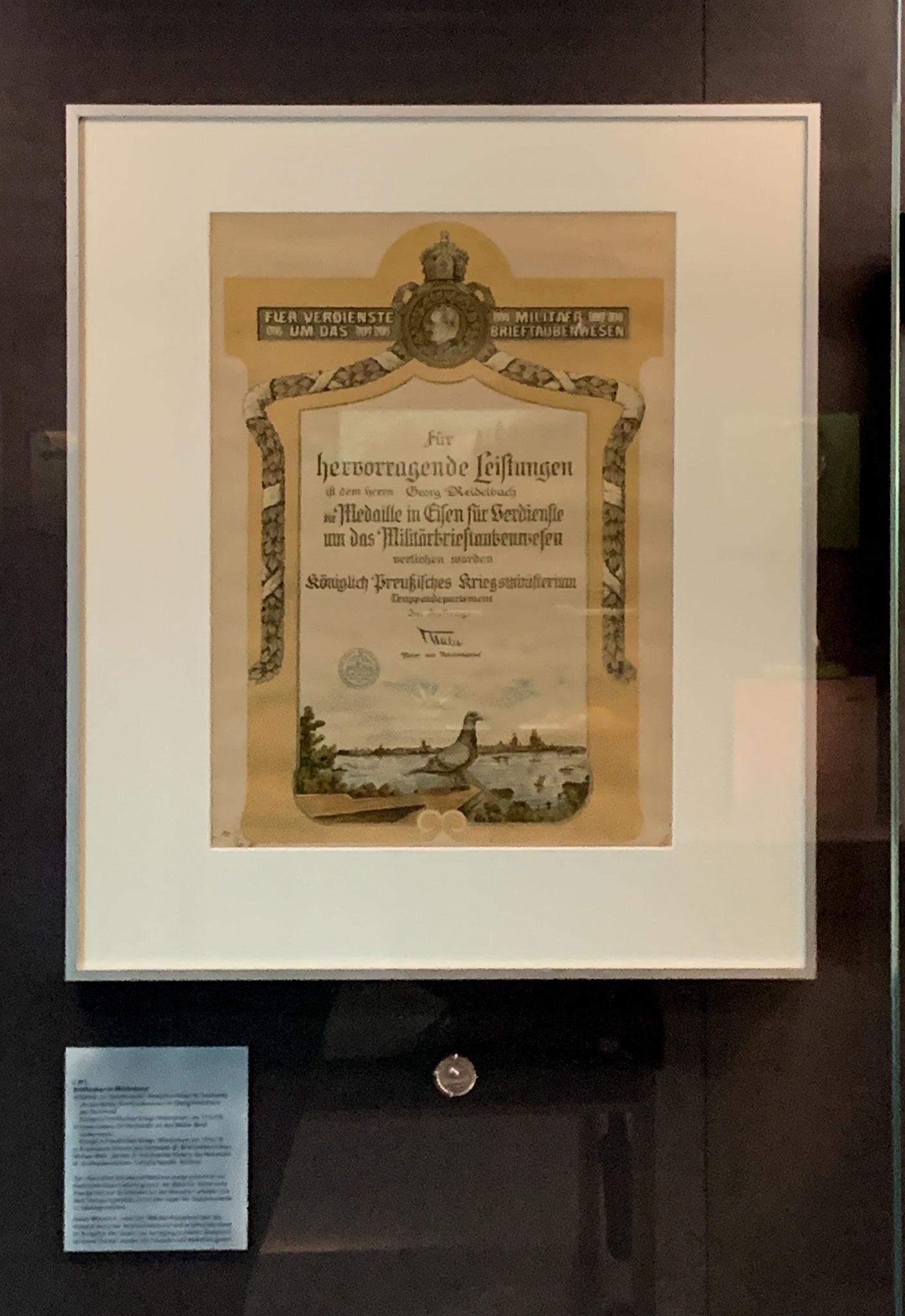Urkunde und eiserne Medaille für hervorragendes Leistungen um das Brieftaubenwesen