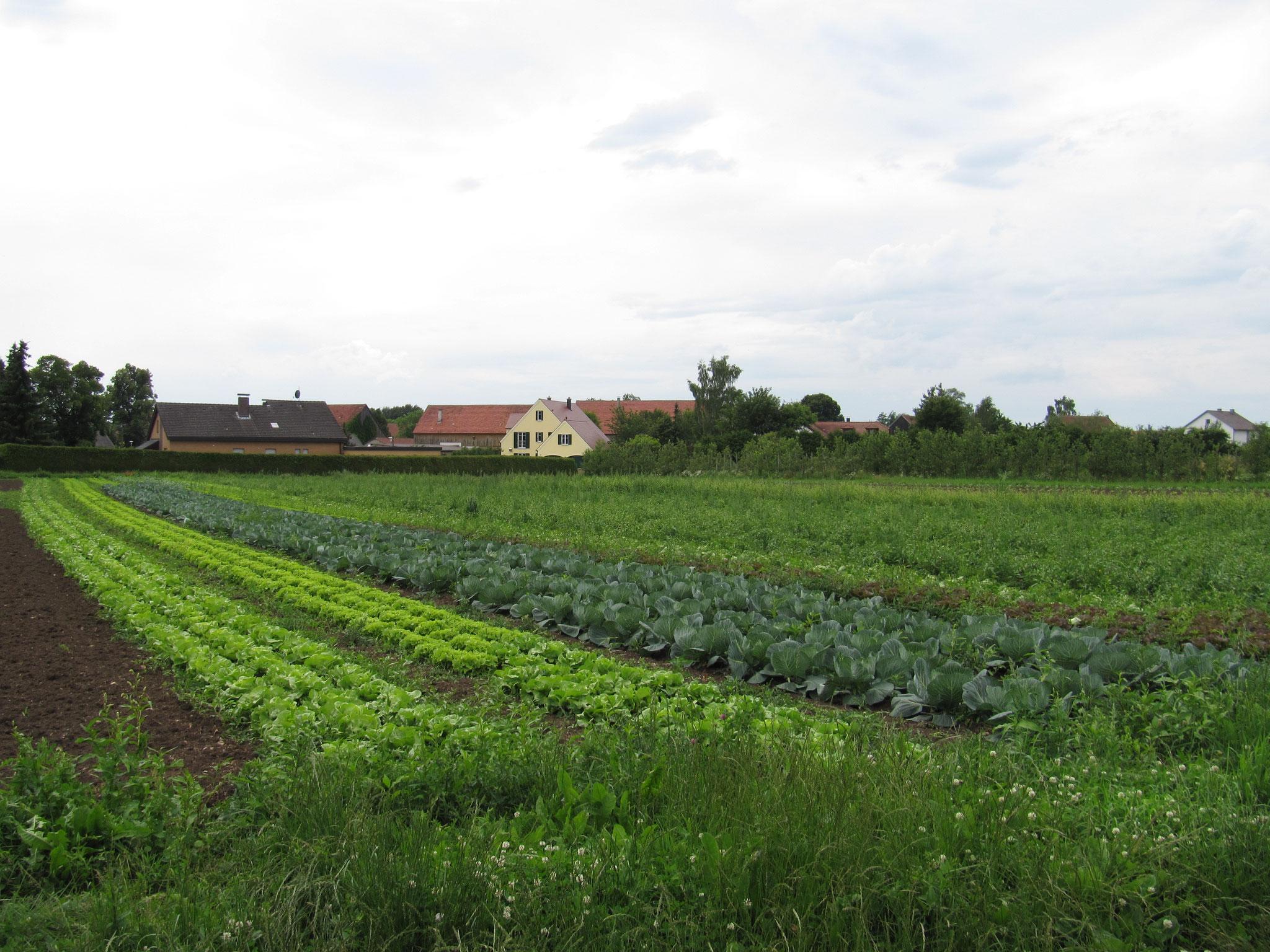 Foto: Ökomodellregion