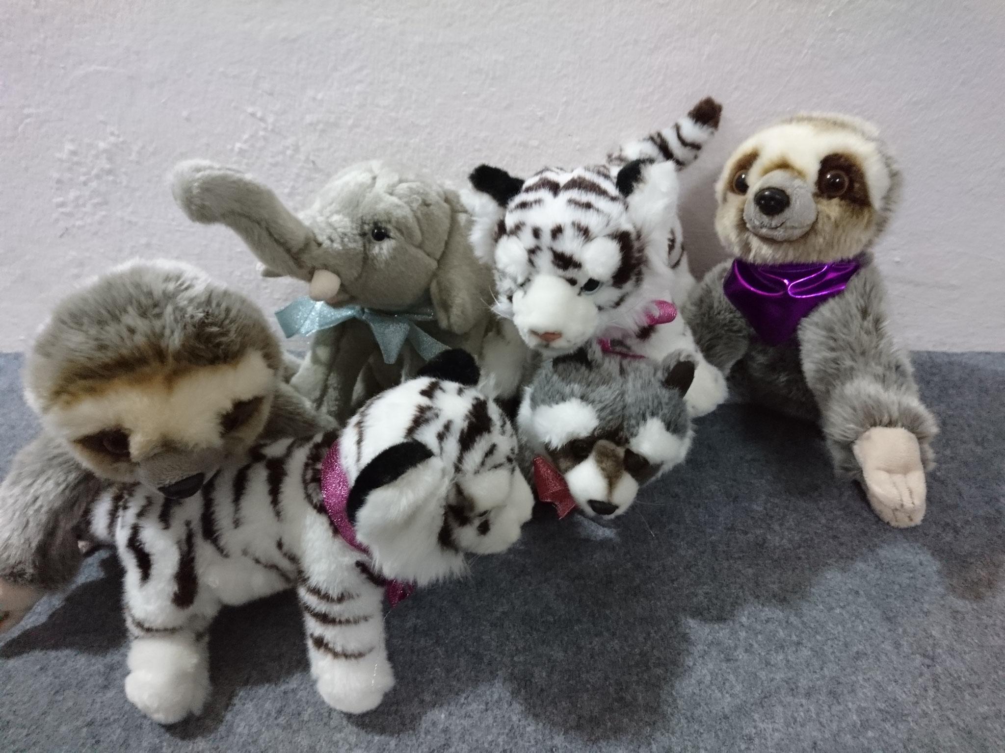 weißer Tiger + Faultier - nur bei einem Kindergeburtstag