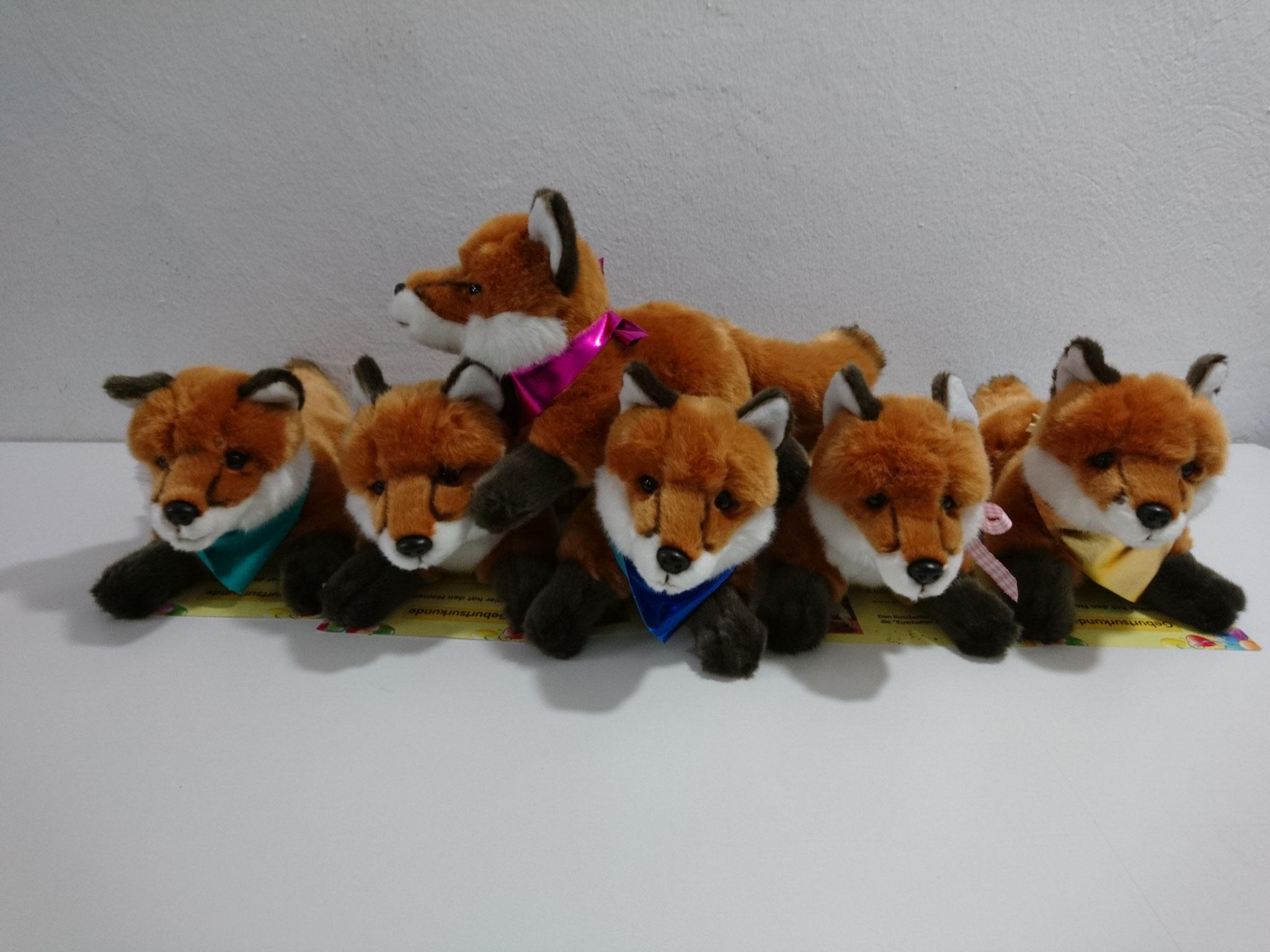 größerer Fuchs - nur bei einem Kindergeburtstag