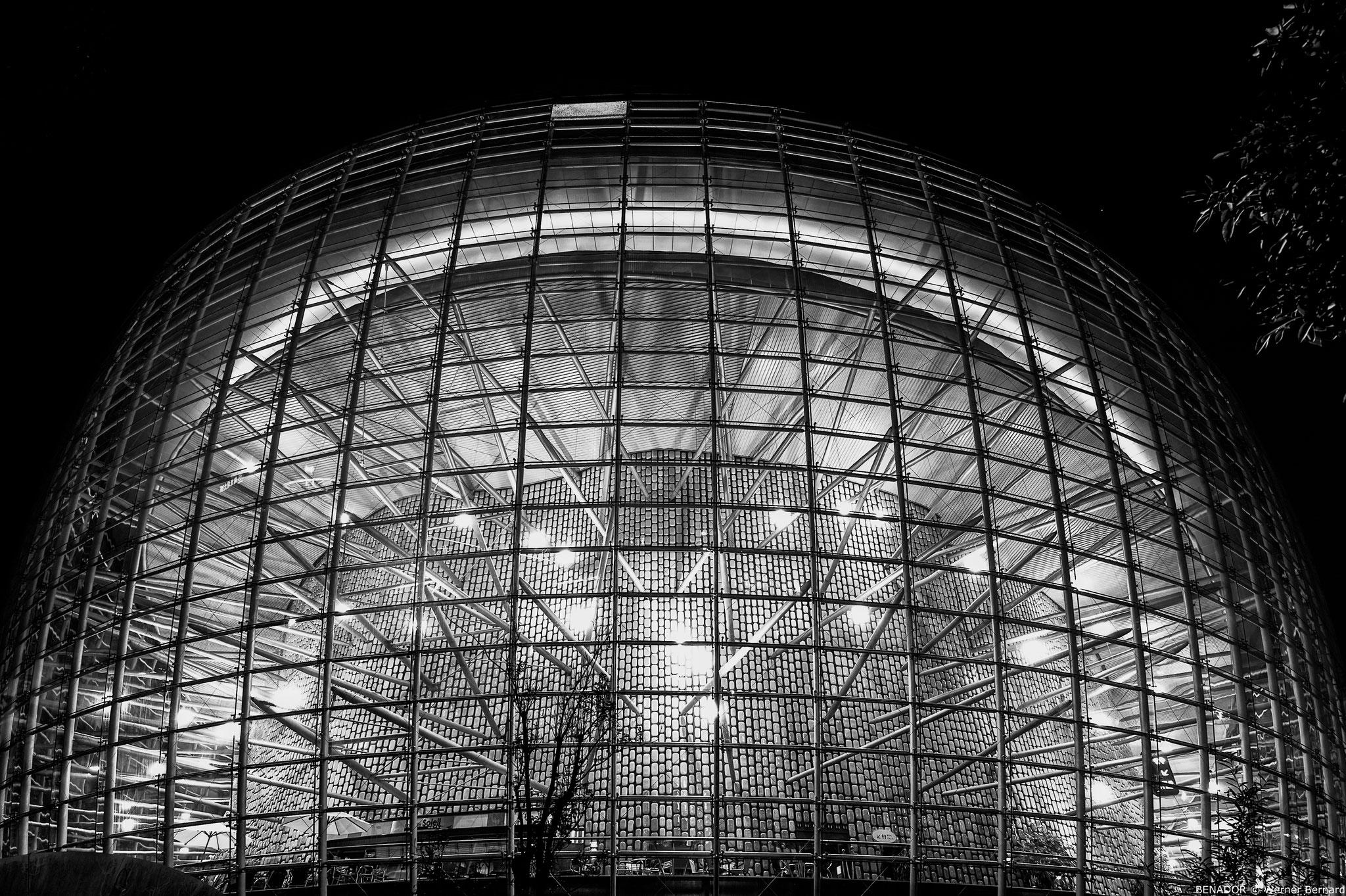 Oriental Art Center 2010