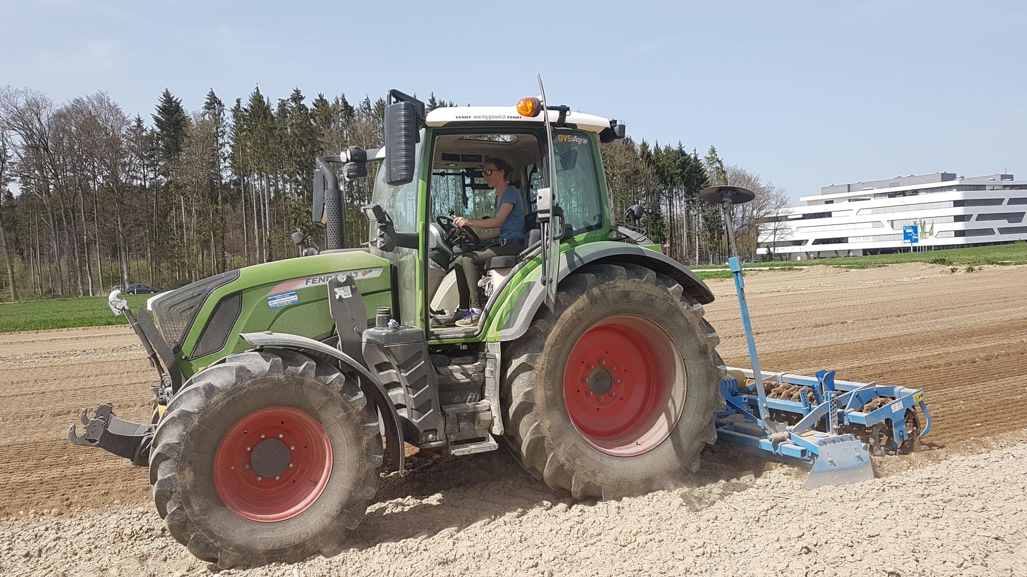 Vorbereitung des Saatbeets für die Kartoffelpflanzung