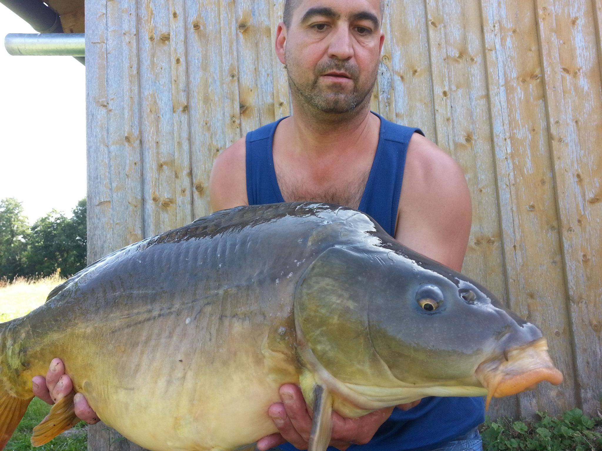 Karpfen, 21 Pfund, 78 cm