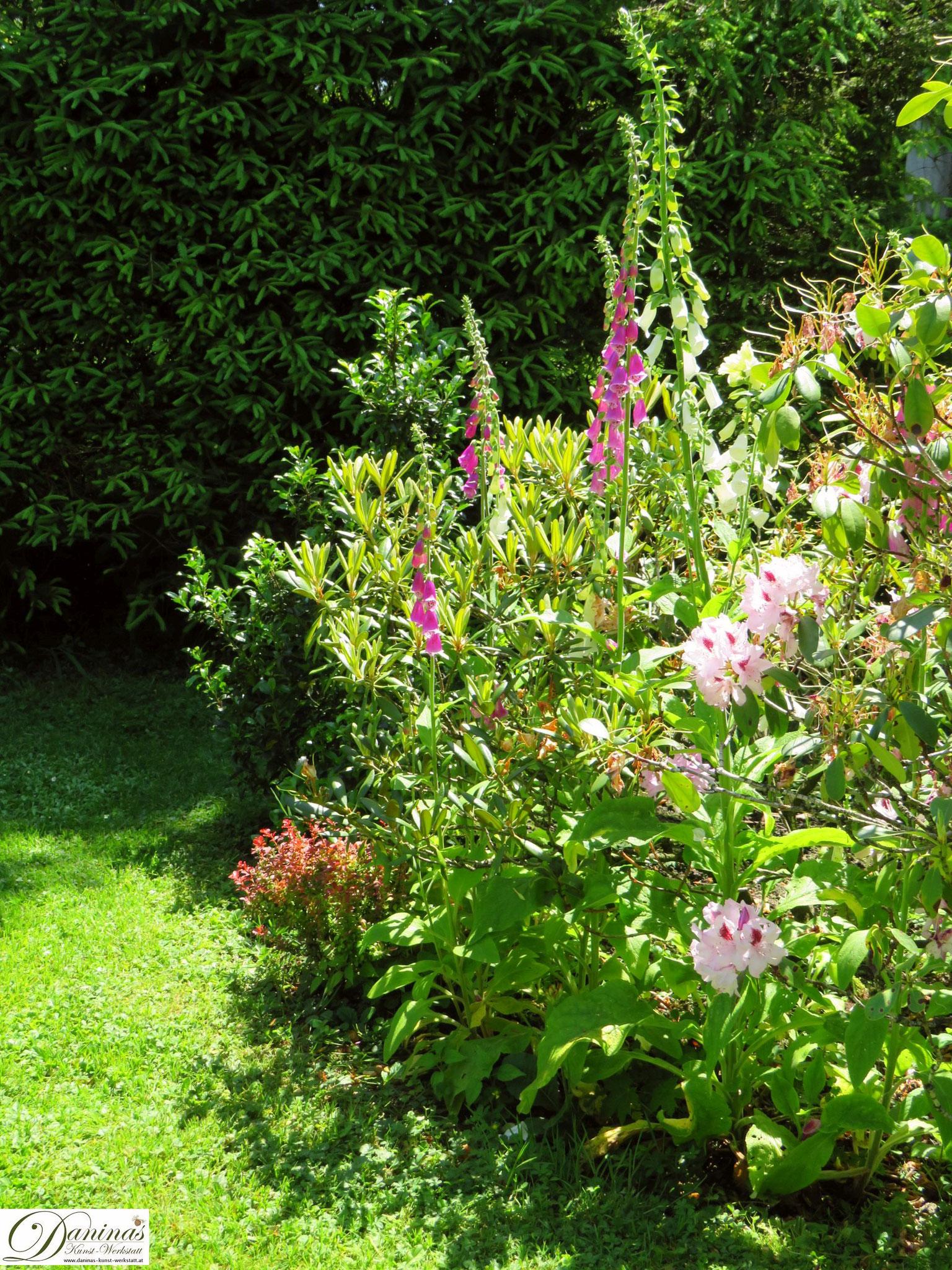 Fingerhut - Garten Impressionen im Frühsommer by Daninas-Kunst-Werkstatt.at