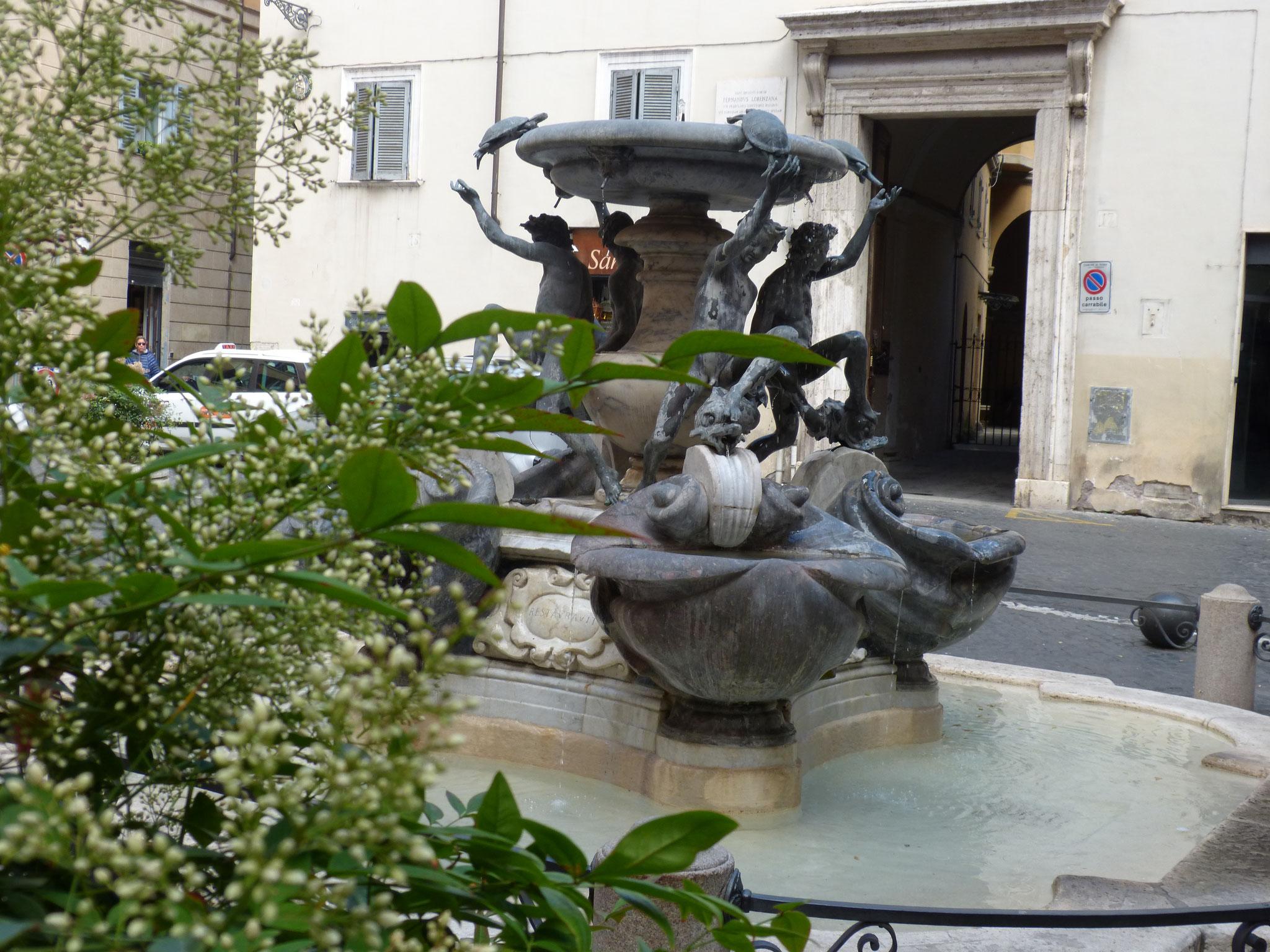 Wunderschön idyllisch liegt der Schildkrötenbrunnen auf der kleinen Piazza Mattei.