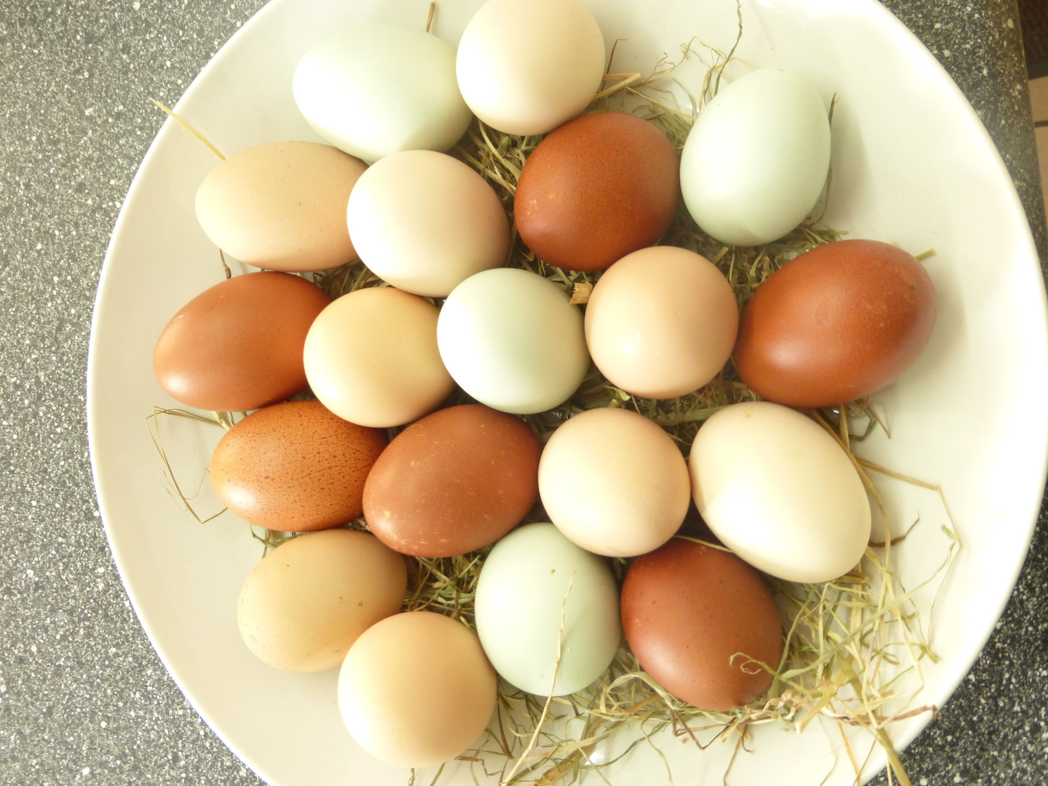 KEIN Ei ist wie das Andere!!!