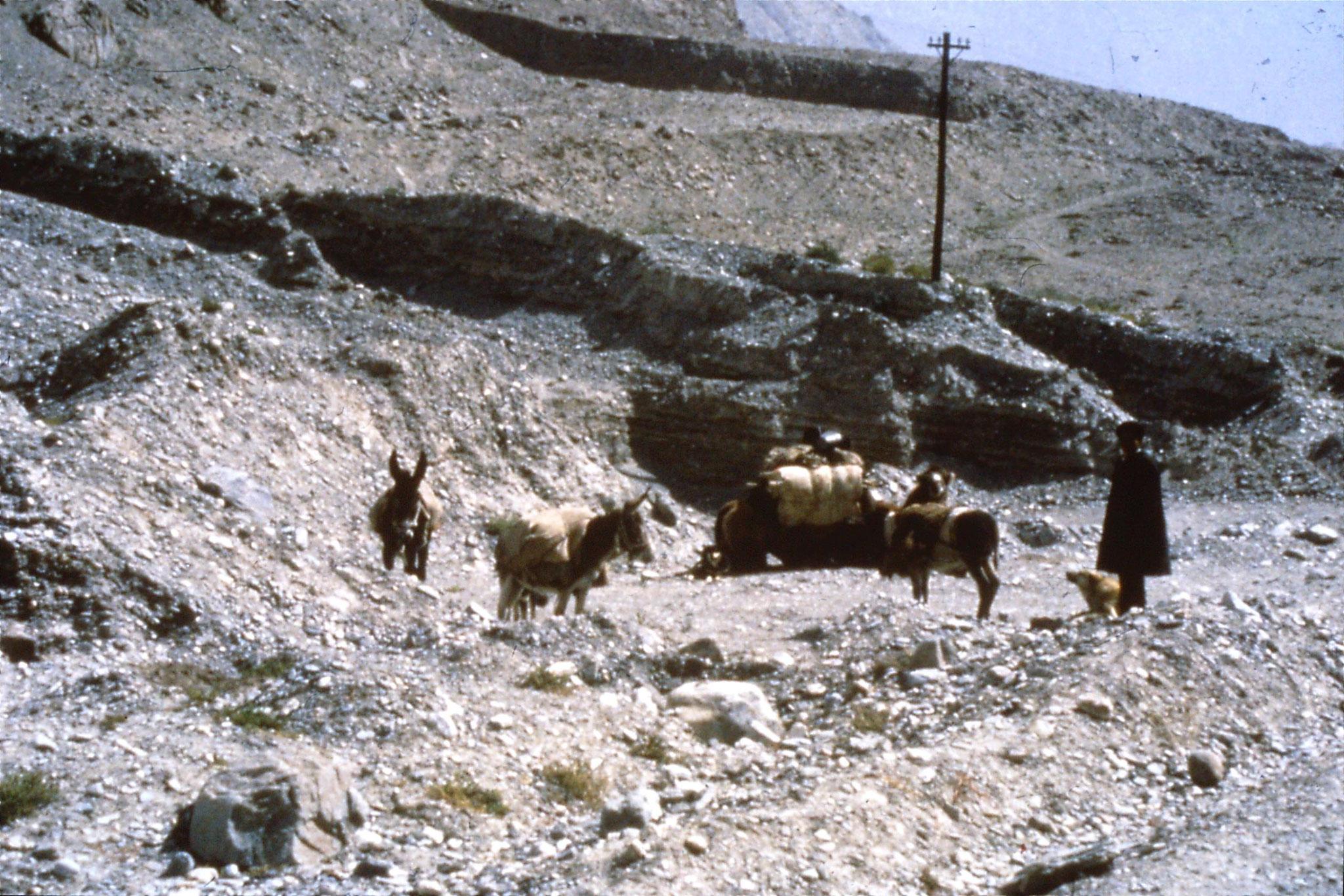 11/9/1989:20: Karakoram Highway 1420