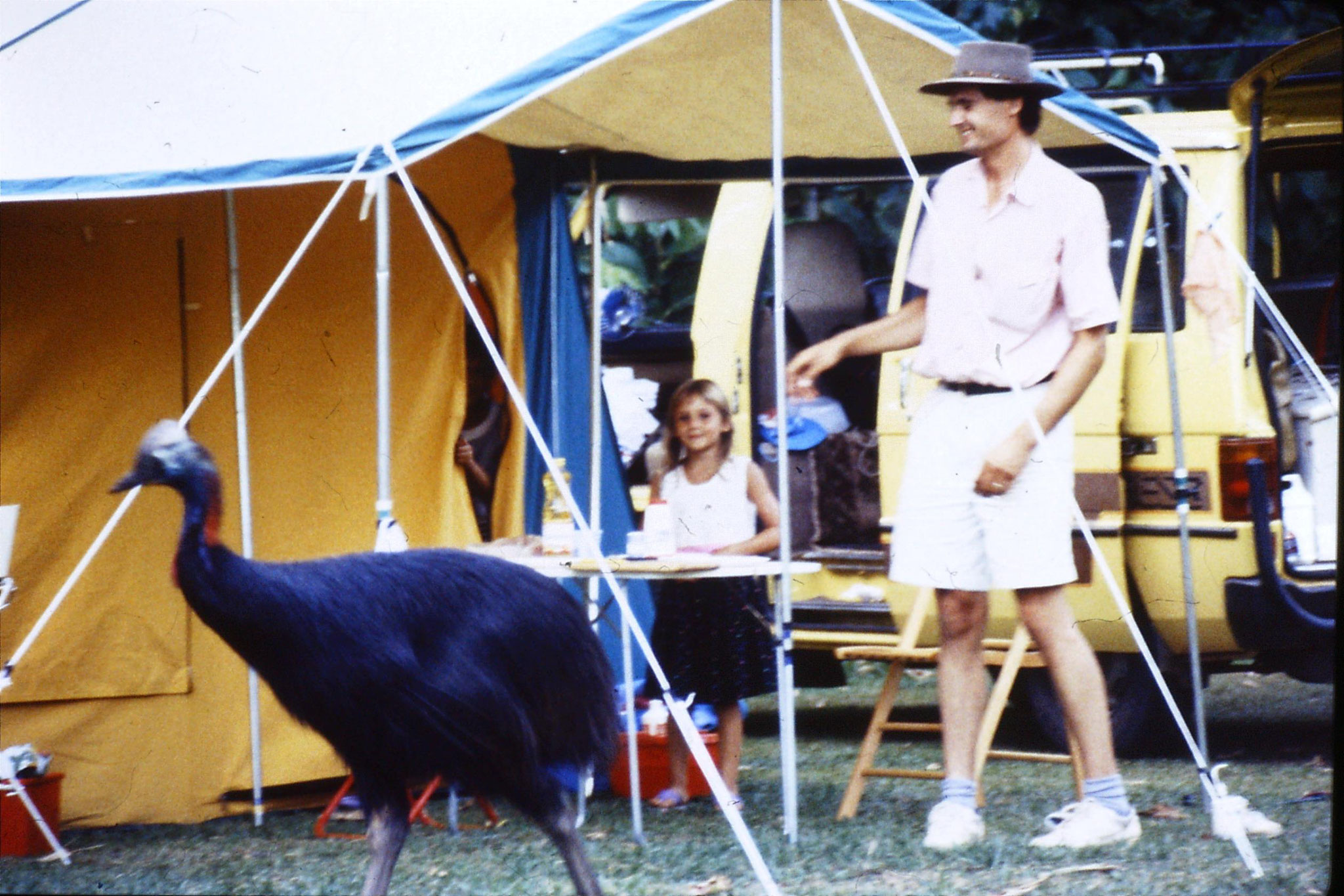 29/10/1990: 8: Mission Beach, cassowary & campers