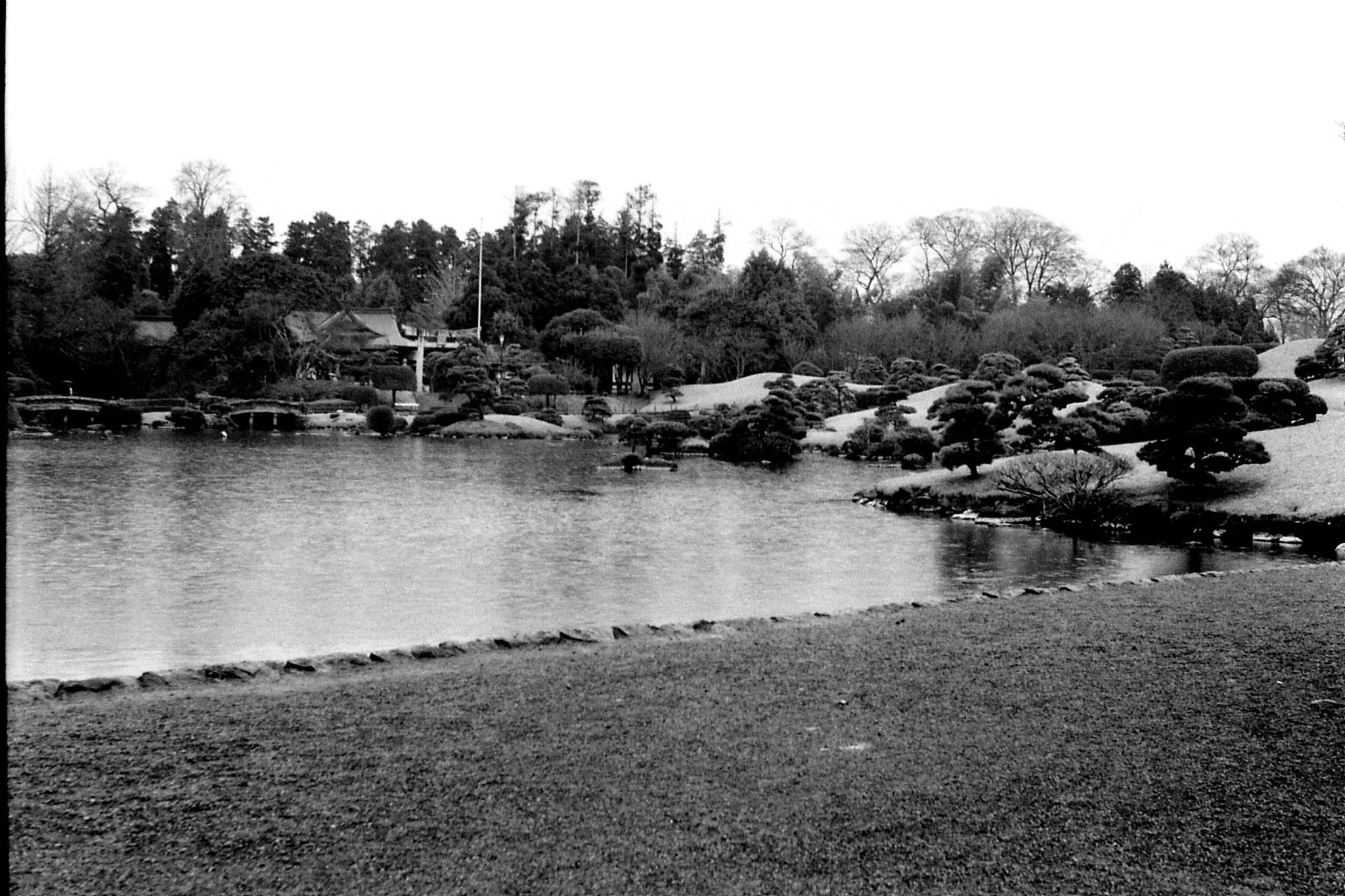 22/1/1989: 21: garden at Kumamoto