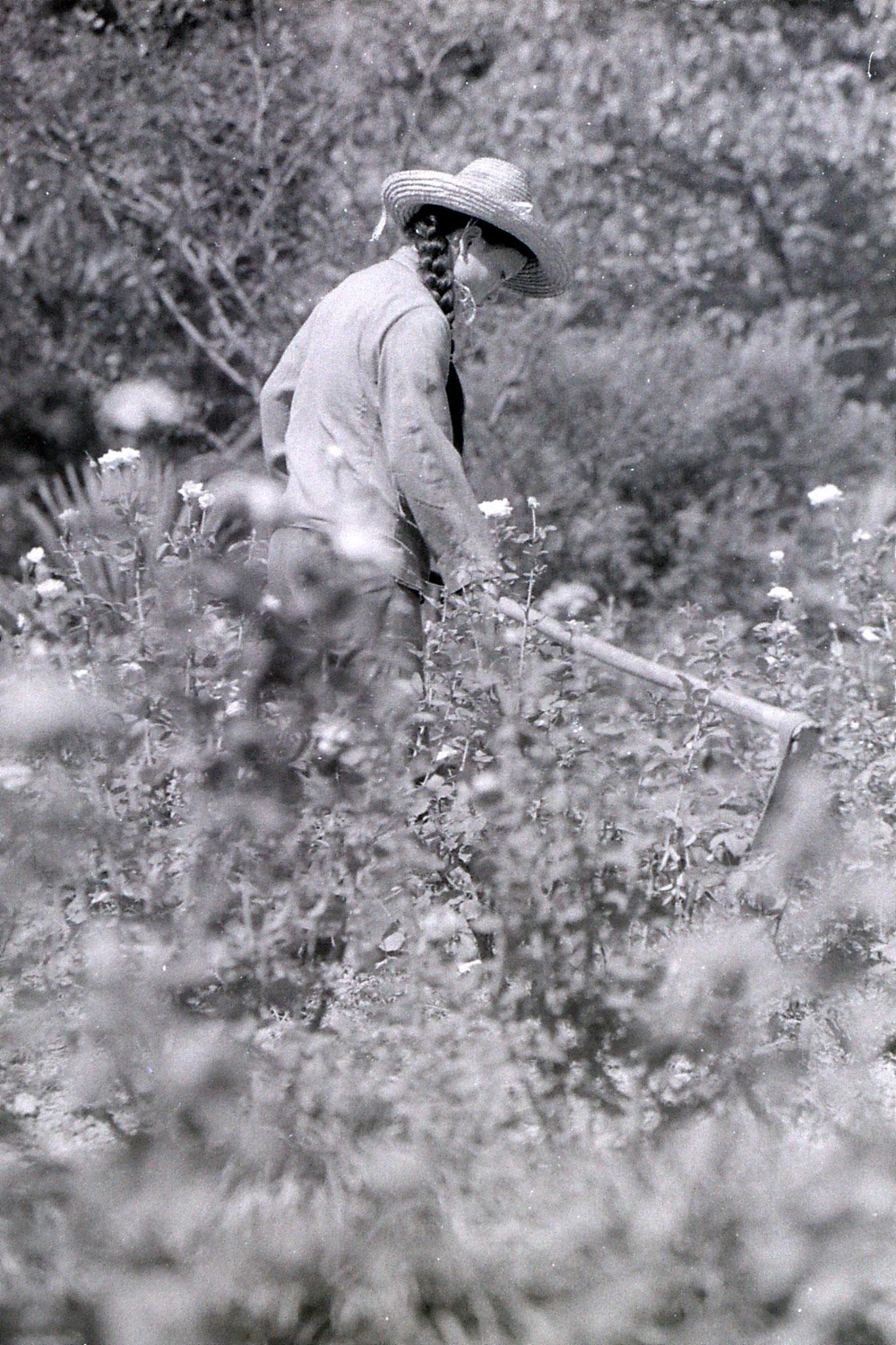 19/7/1989: 10: gardner