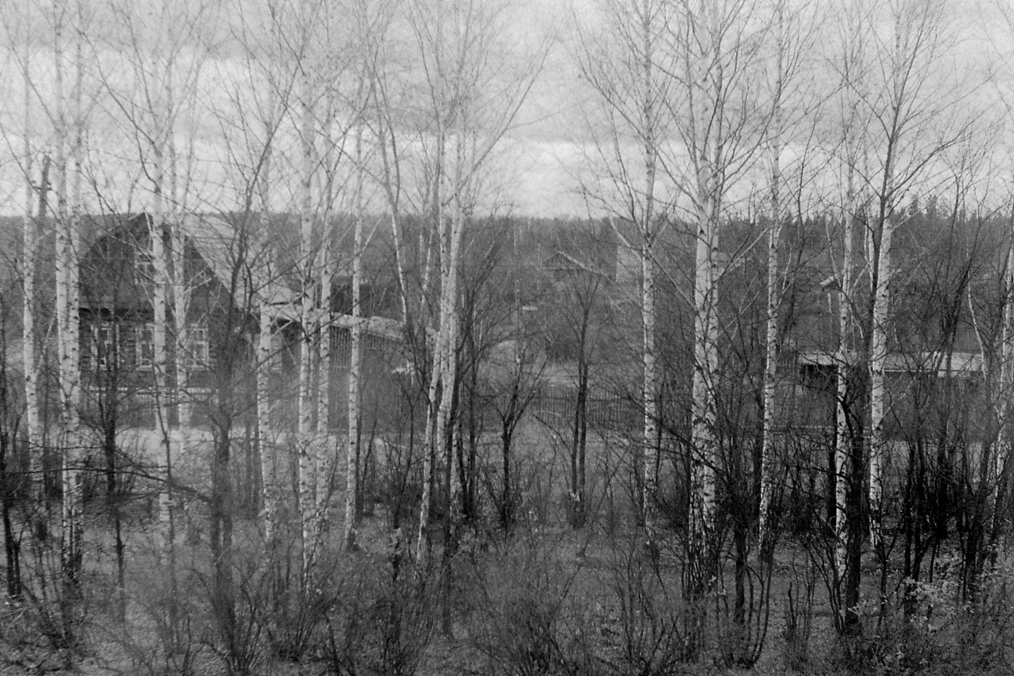 19/10/1988: 28: from Siberian Express between Balezino and Perm