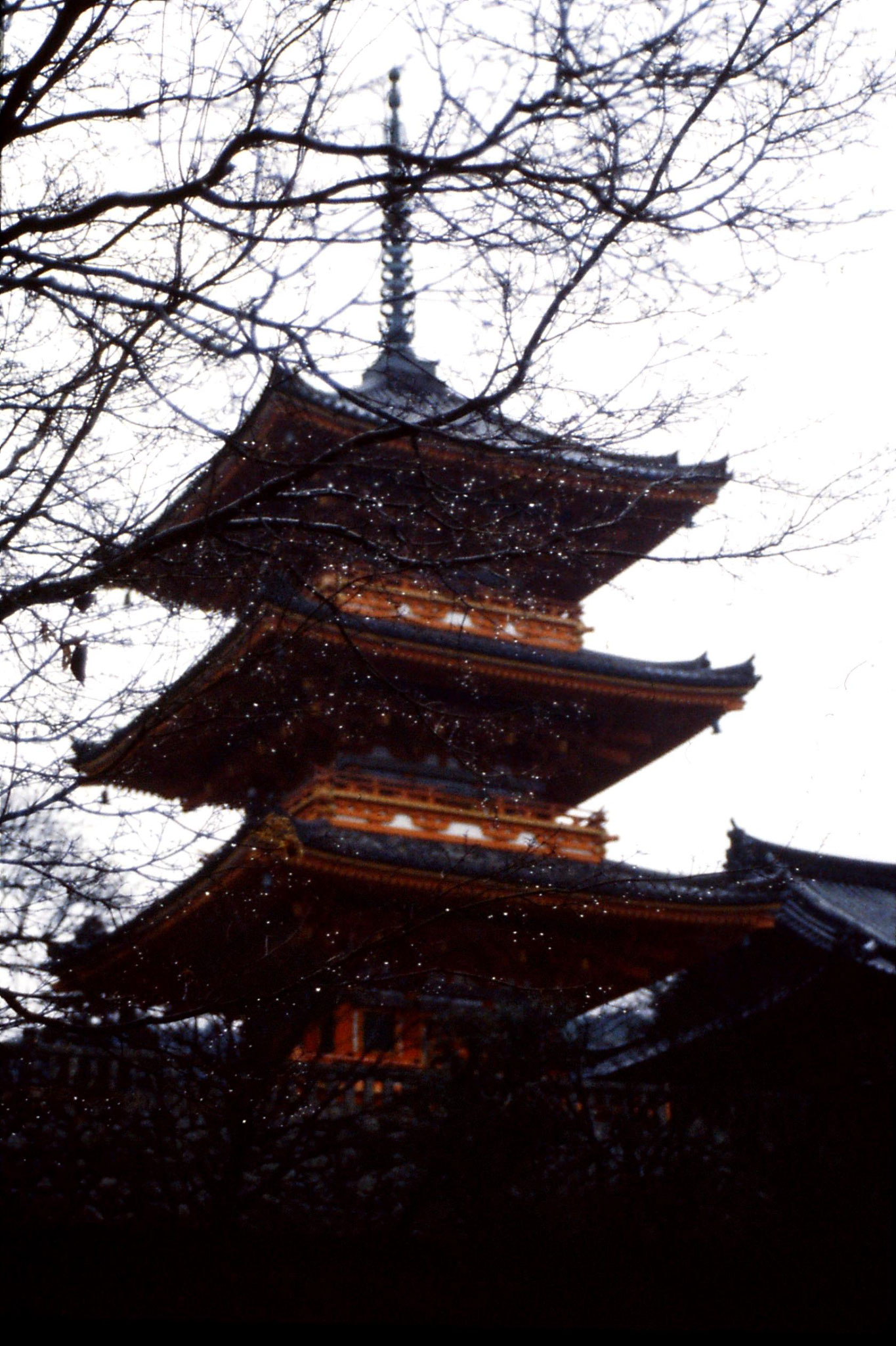 26/1/1989: 8: Kyoto