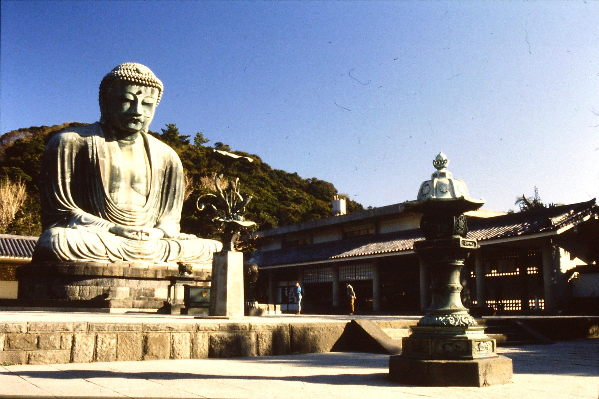 29/1/1989: 33: Daibutsu at Kamakura