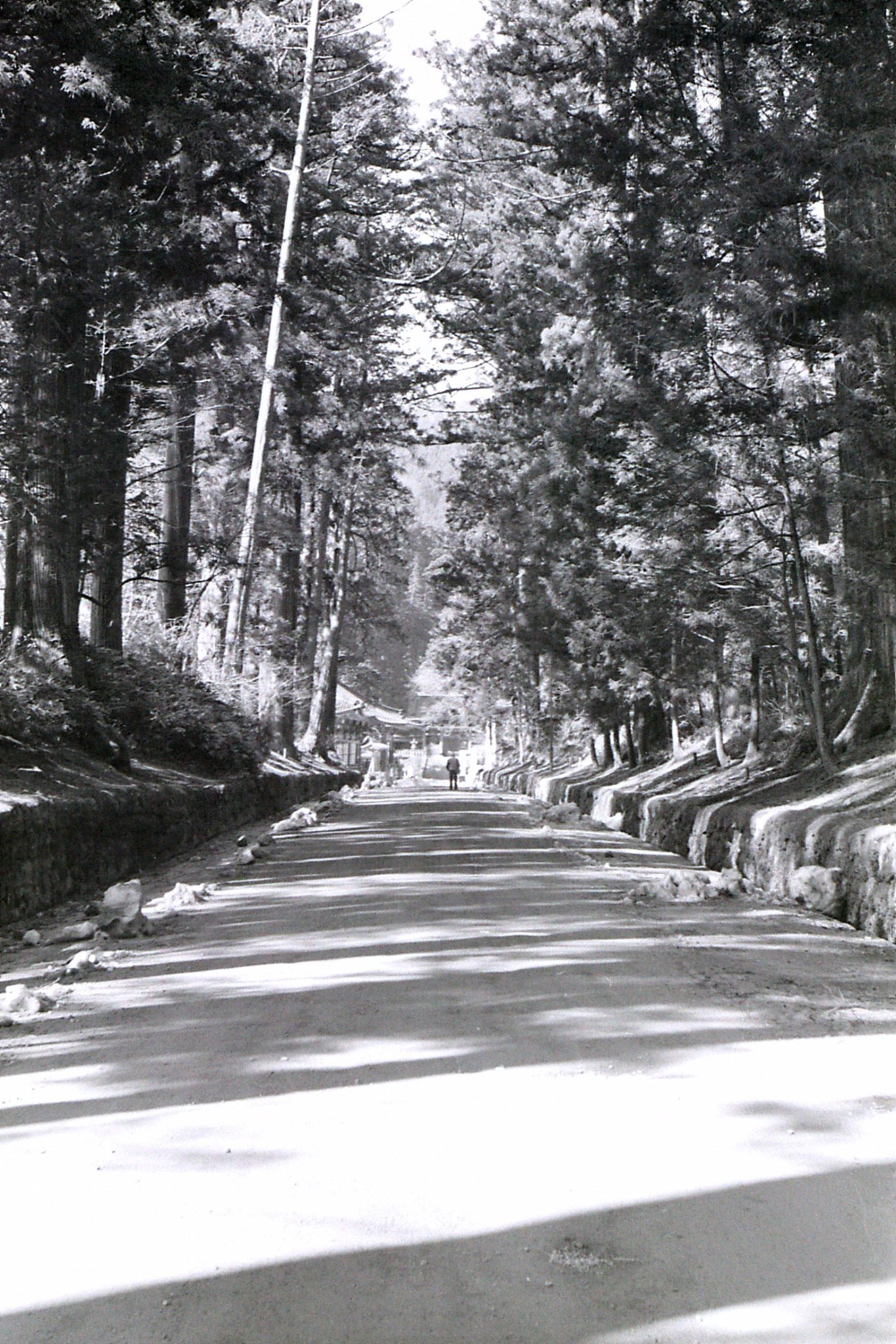 31/1/1989: 2: Avenue for Toshugu to Daiyuin