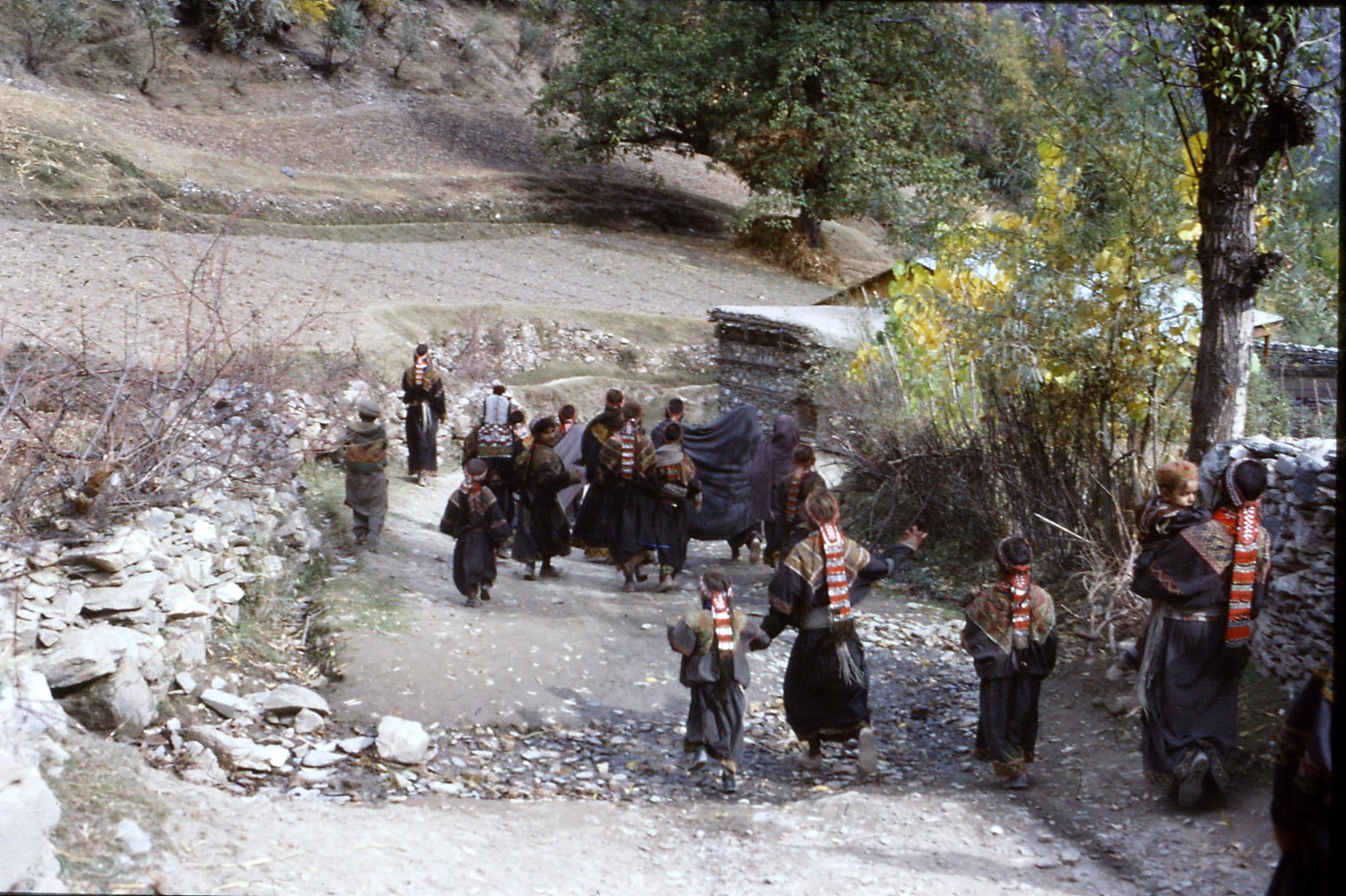 1/11/1989: 3: Kalash Valley, Bumburet, after bridal procession
