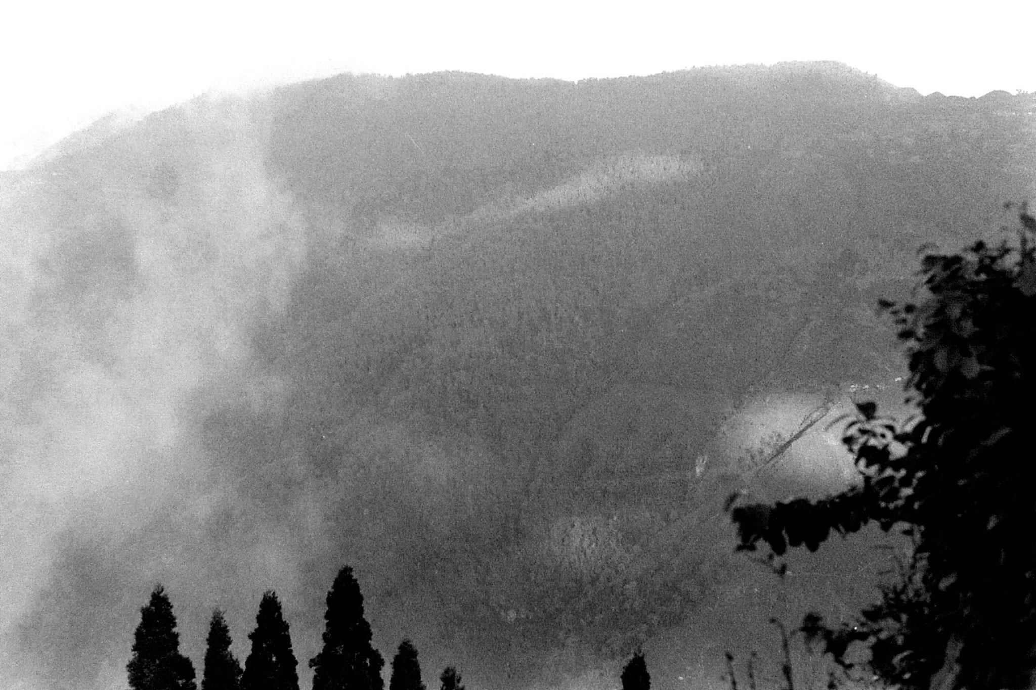 1/5/1990: 8: Darjeeling panorama