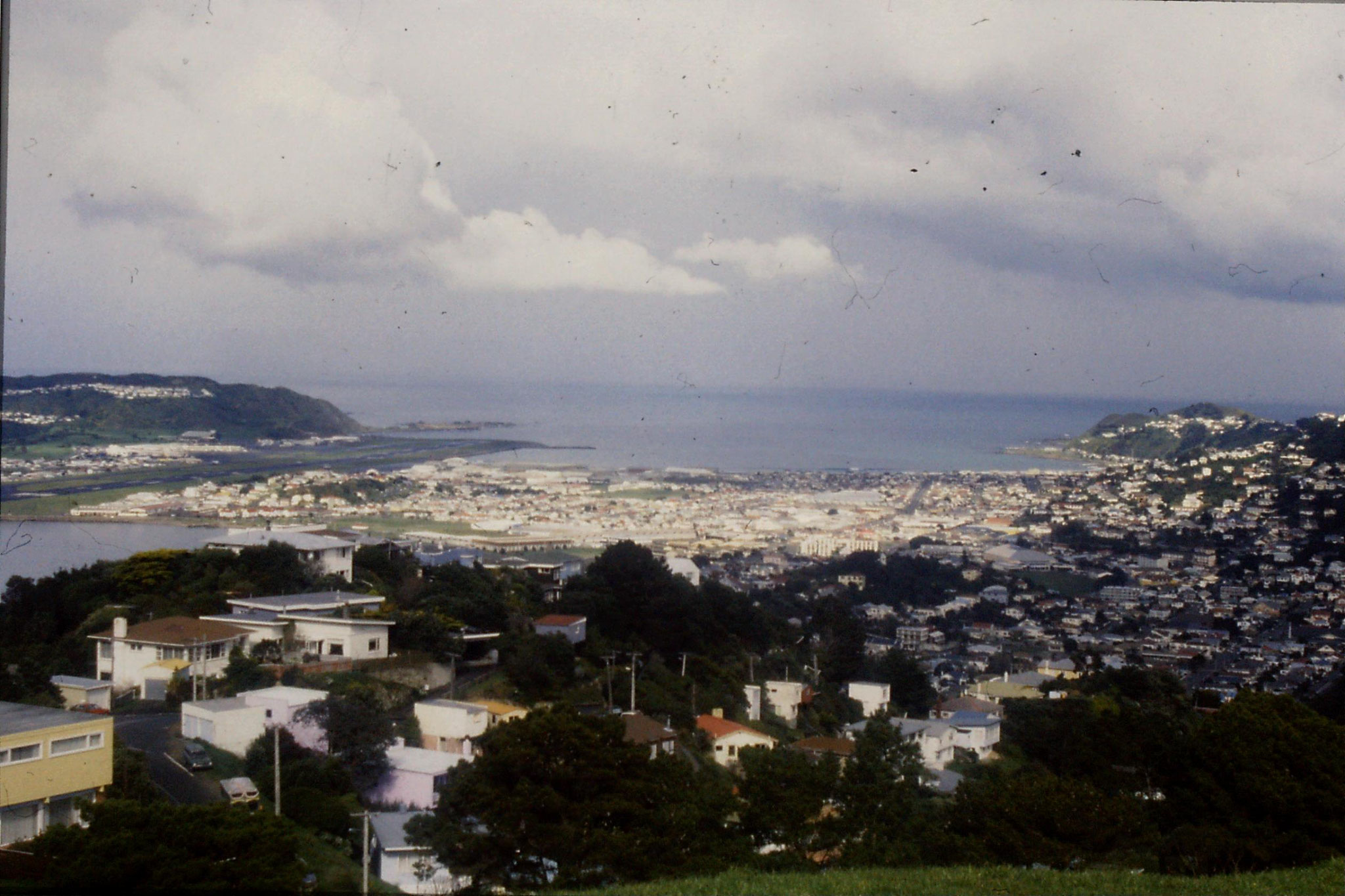 25/8/1990: 8: Wellington from Mt Victoria